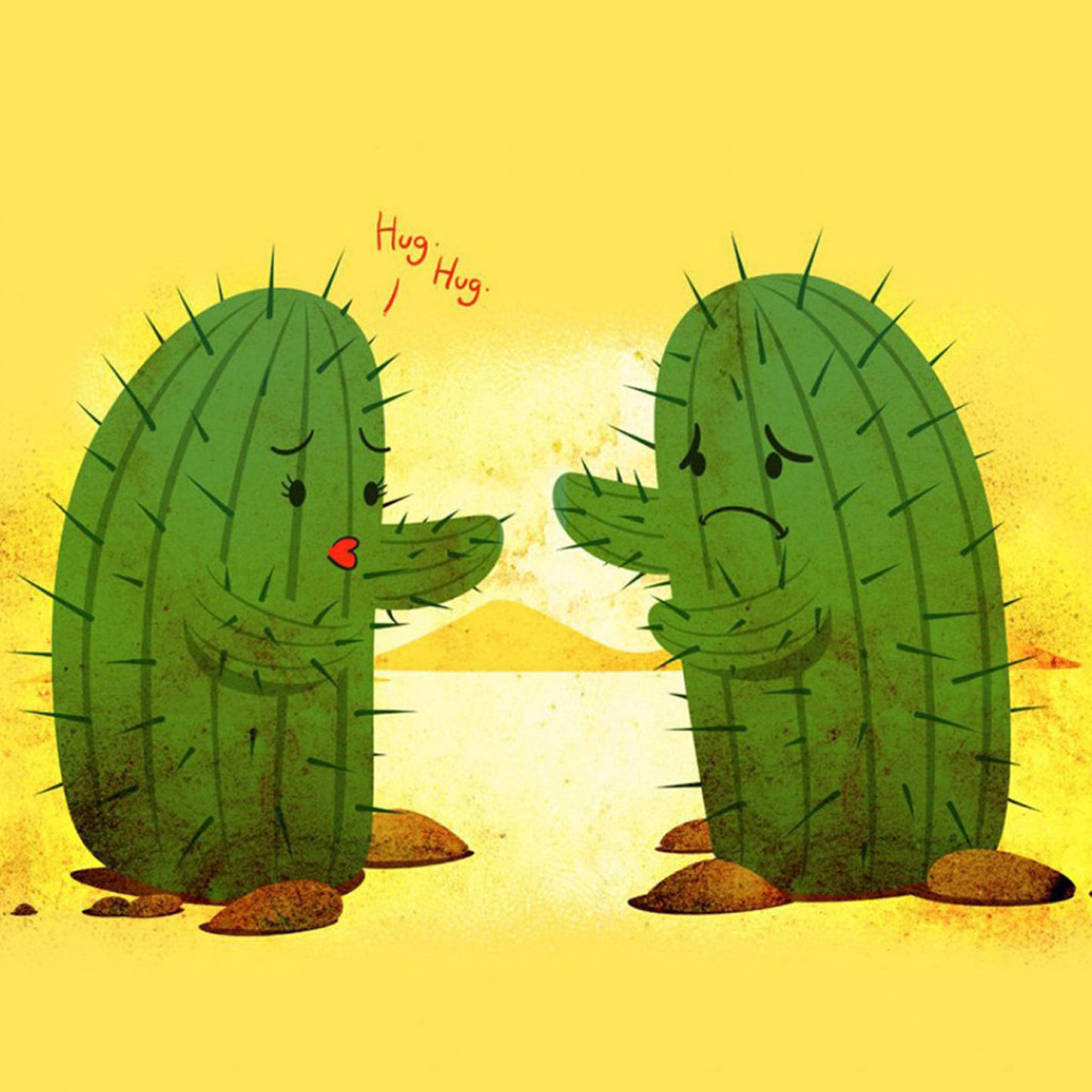 Cactus Wallpapers 61 Background Pictures