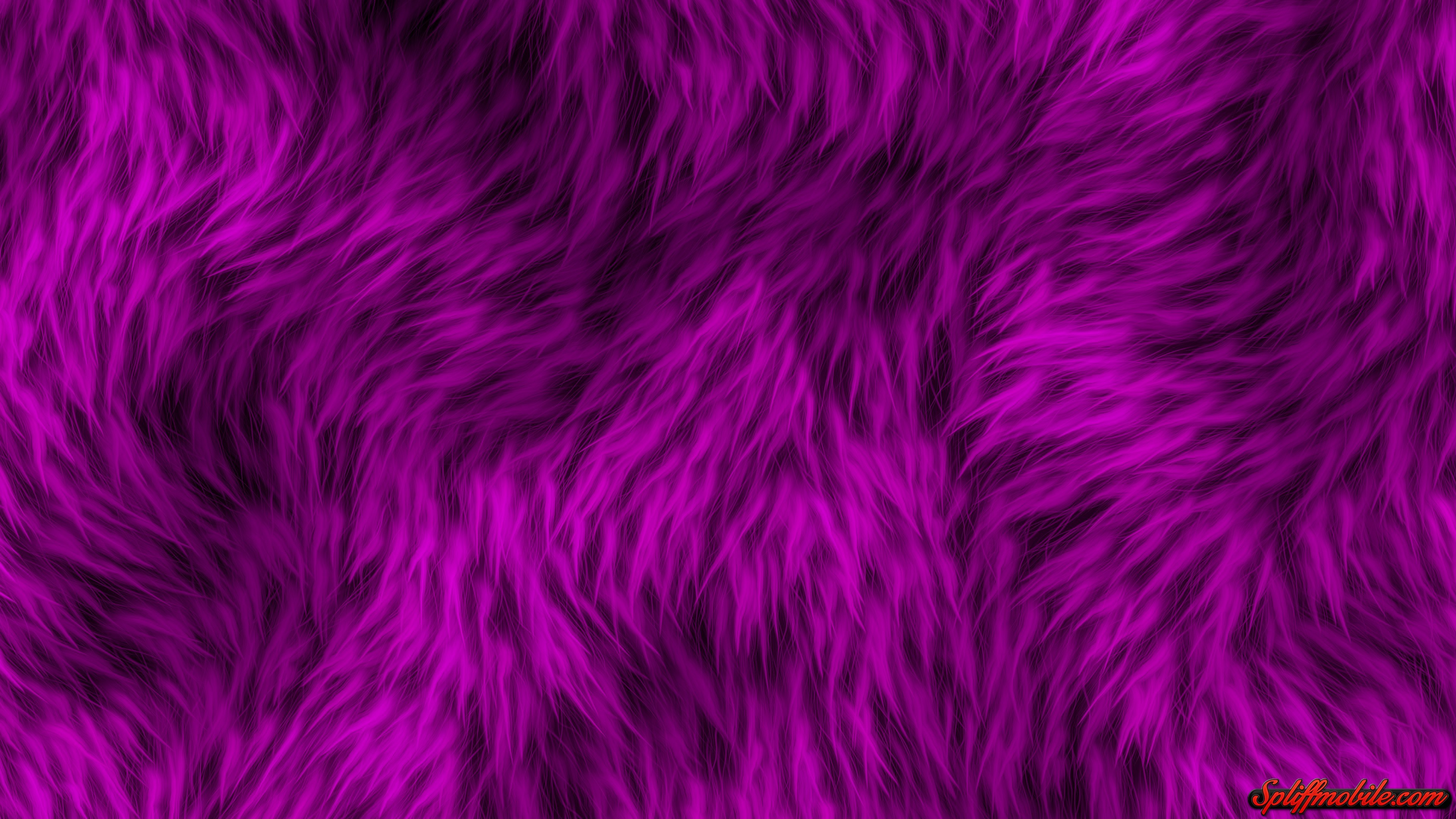Pink Fur Wallpaper For Bedrooms: Pink Fur Wallpapers For Bedrooms (46+ Background Pictures
