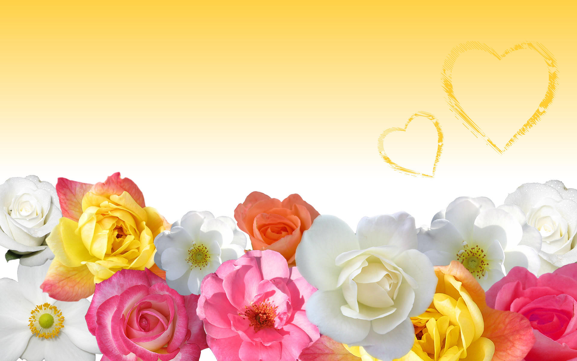 Love Flowers Wallpapers 54 Background Pictures