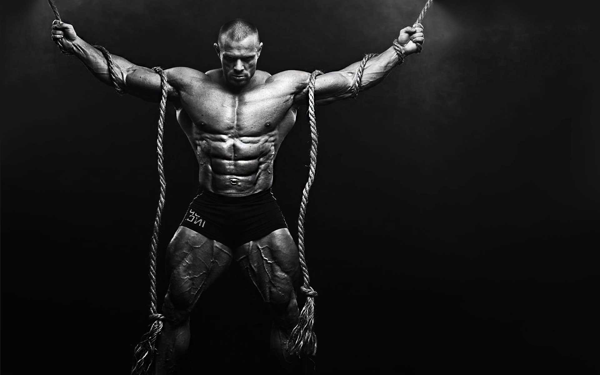 Bodybuilding Wallpapers HD 2017 (71+ Background Pictures