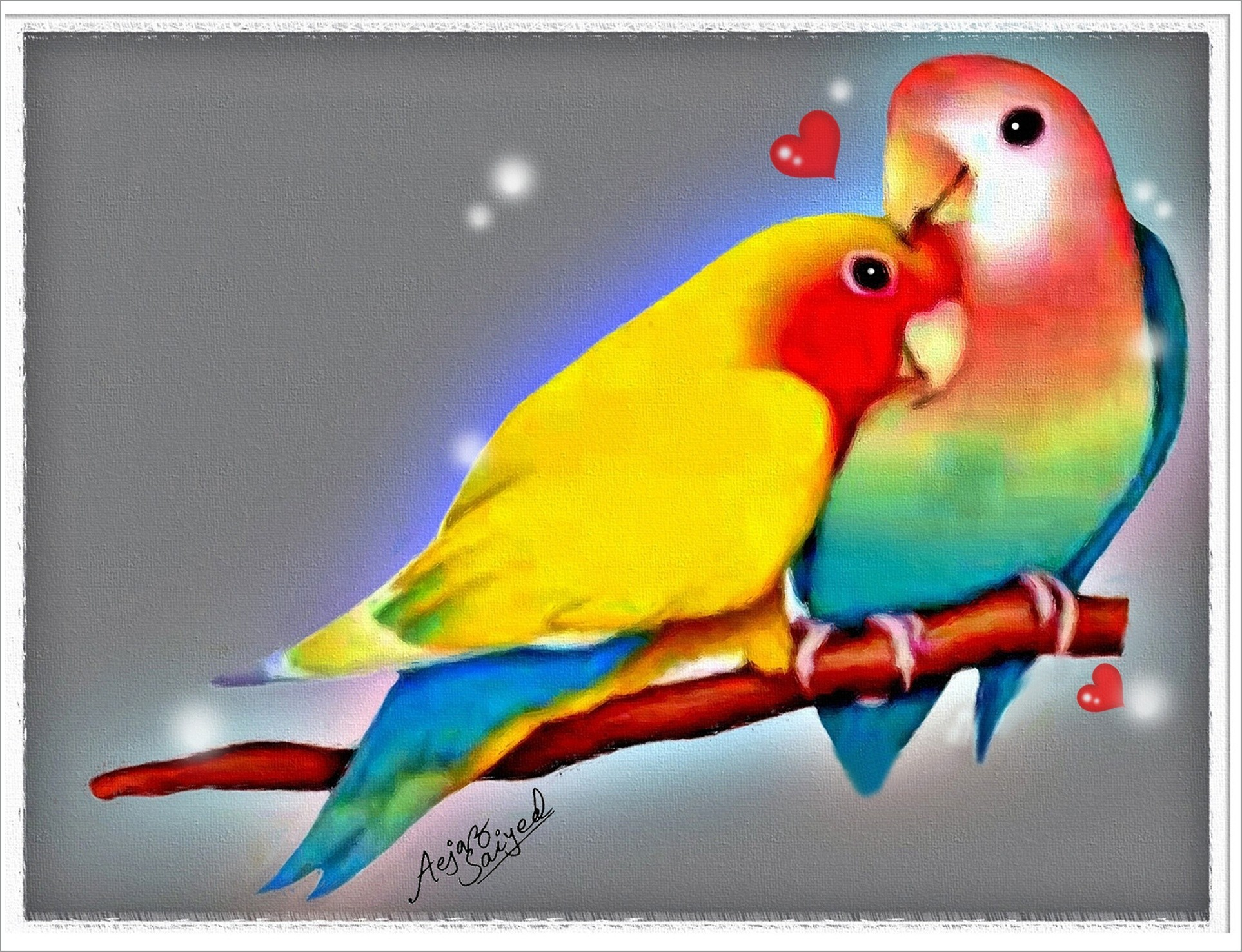 Love Birds Wallpapers (59+ background pictures)
