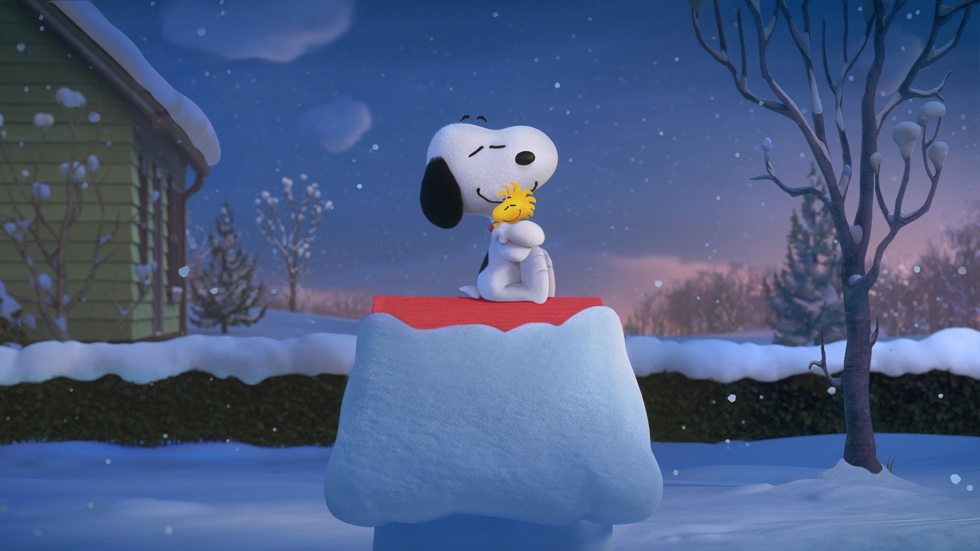Snoopy Wallpapers 74 Background Pictures