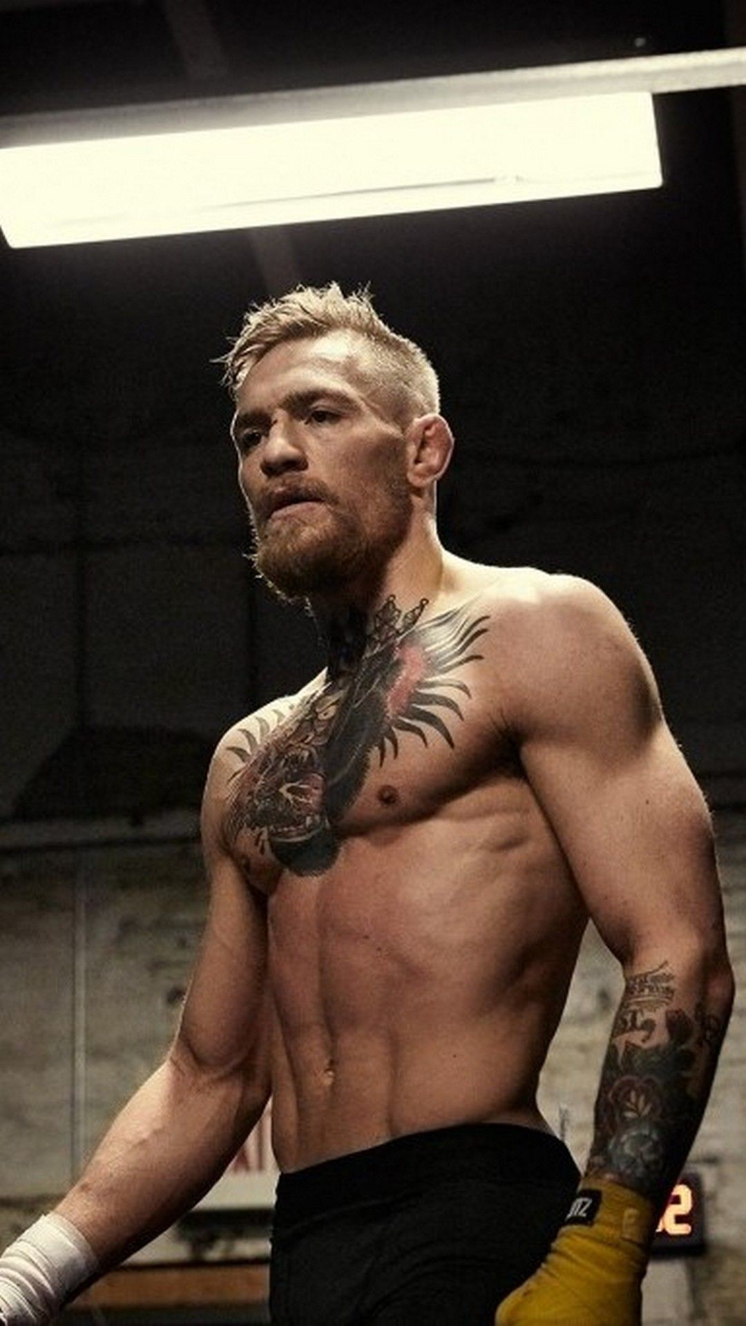 Ufc Wallpapers 2018 77 Background Pictures
