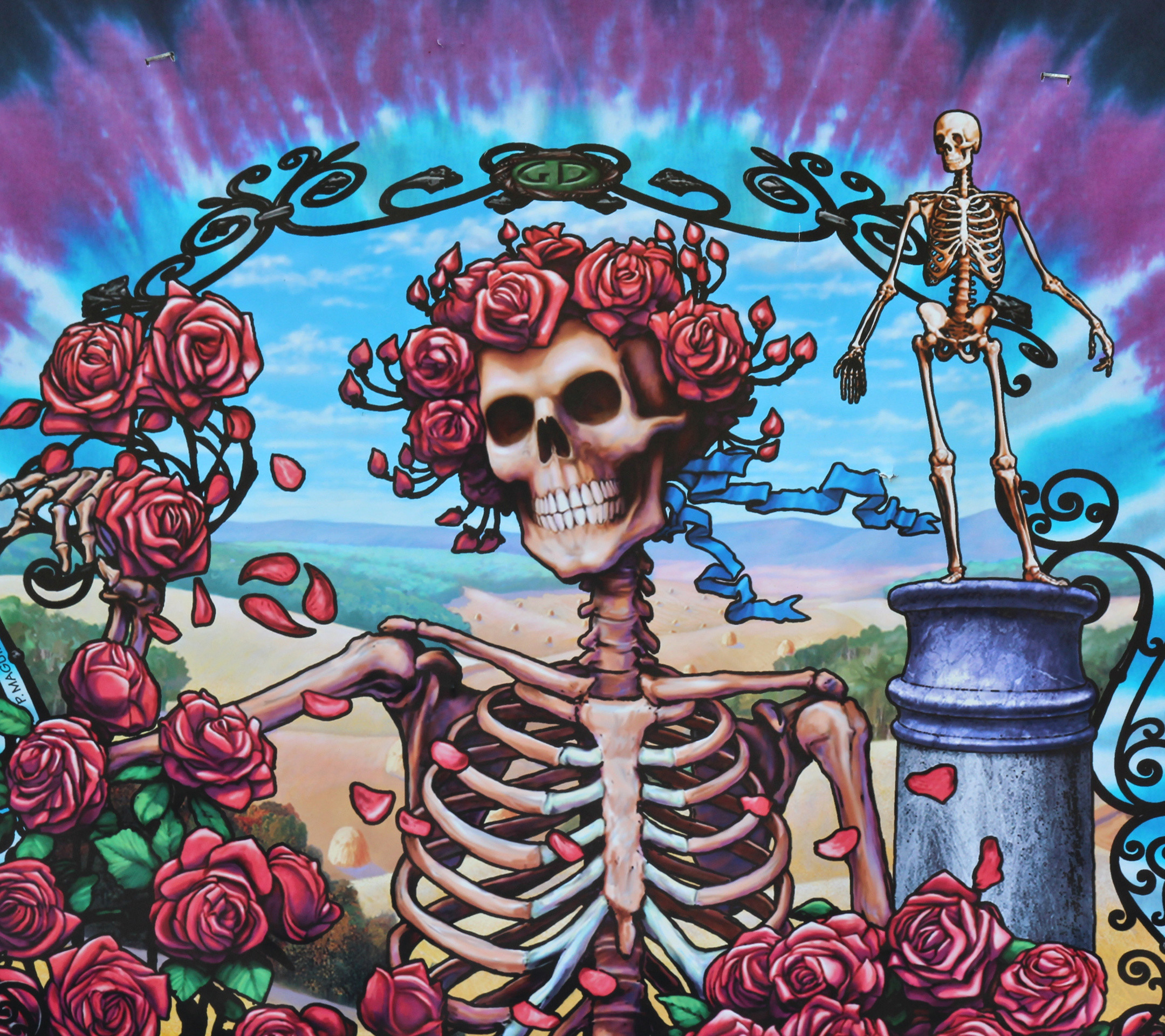 Grateful Dead Wallpapers 72 Background Pictures