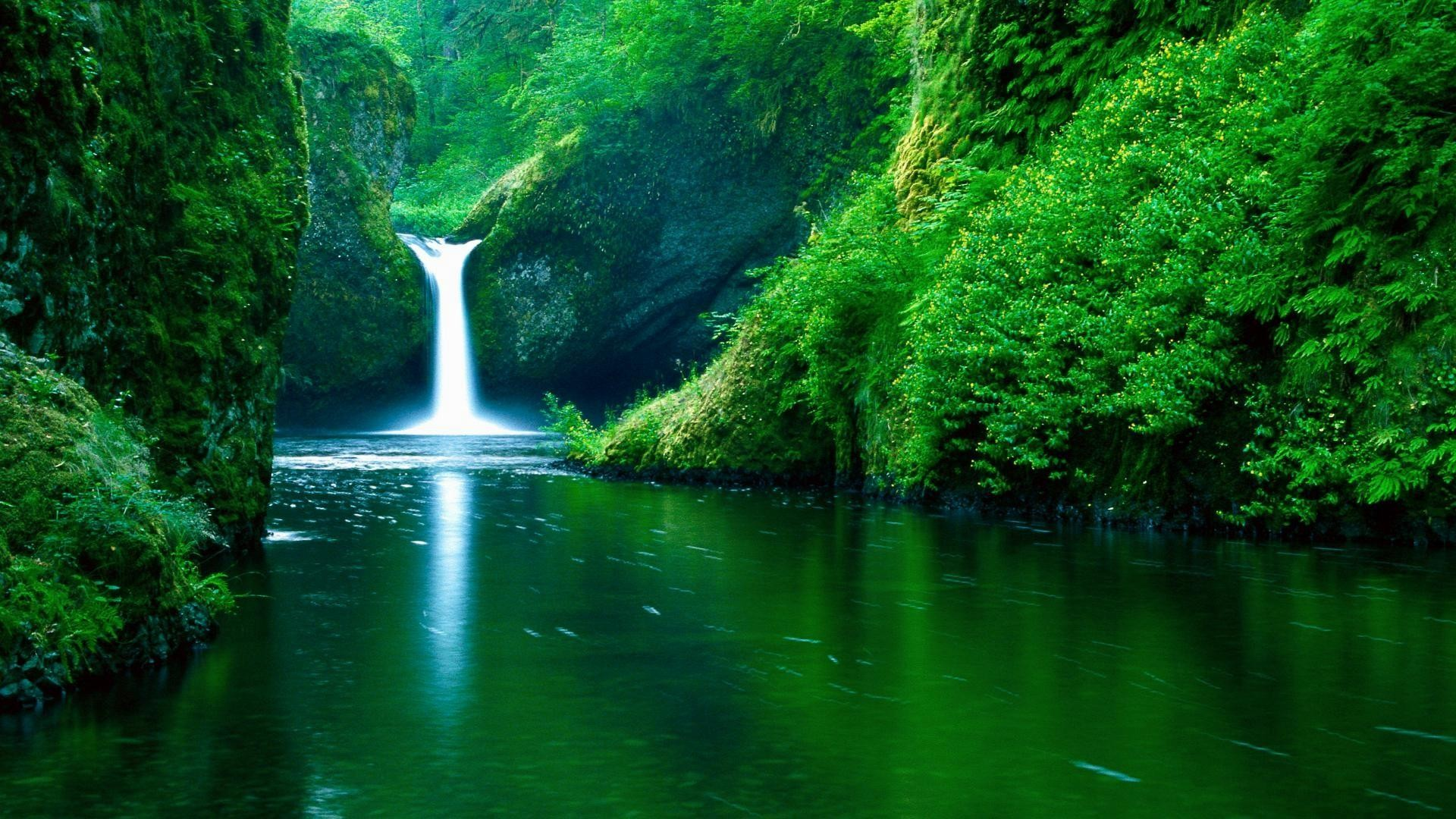 Living Wallpapers For Pc 76 Background Pictures