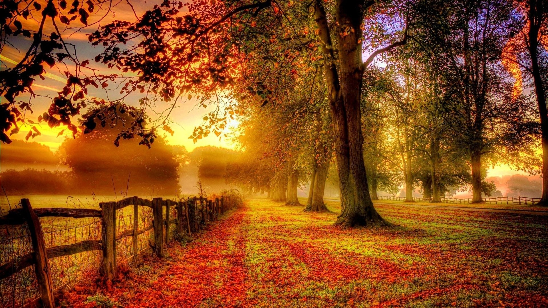 1920x1080 Autumn Wallpaper Background Autumn Desktop Background Group With 58 Items
