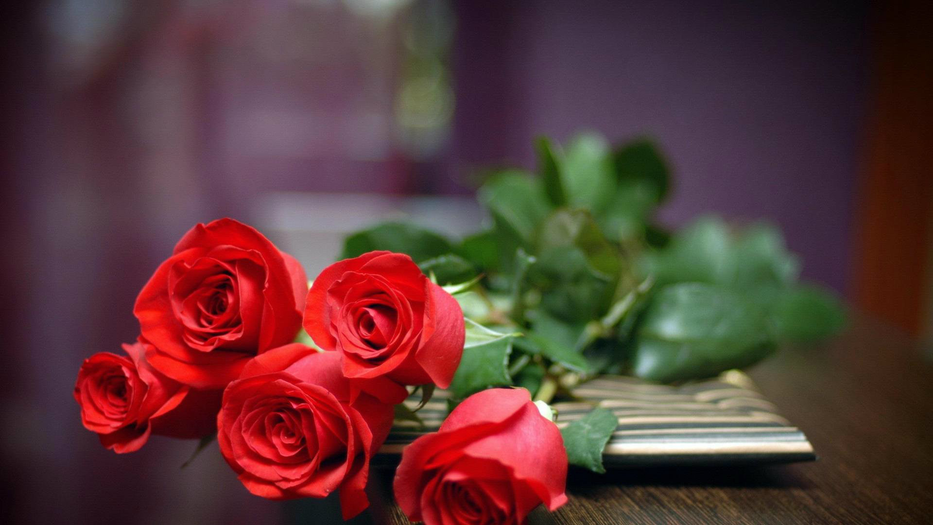 Roses Desktop Wallpapers 63 Background Pictures