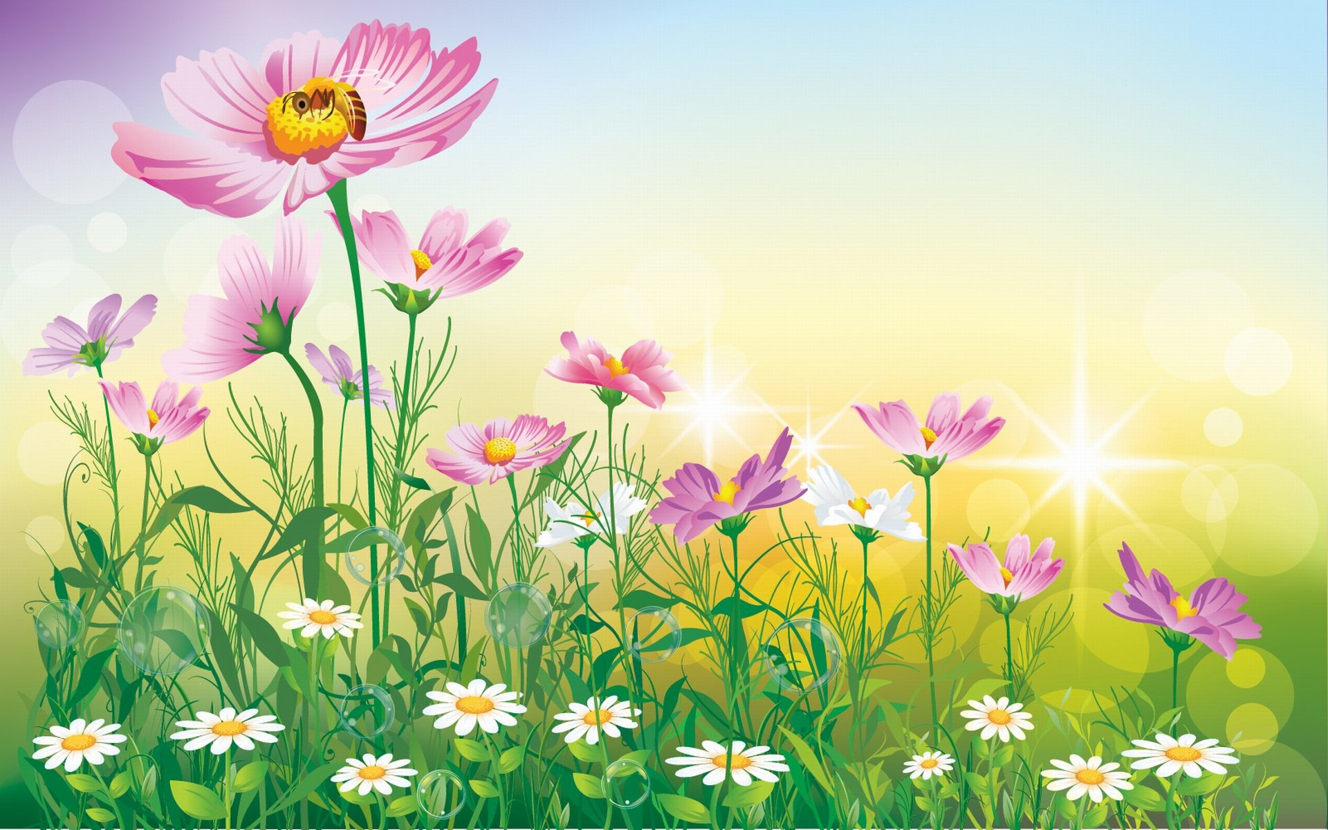 Flowers Background Wallpapers 72 Background Pictures