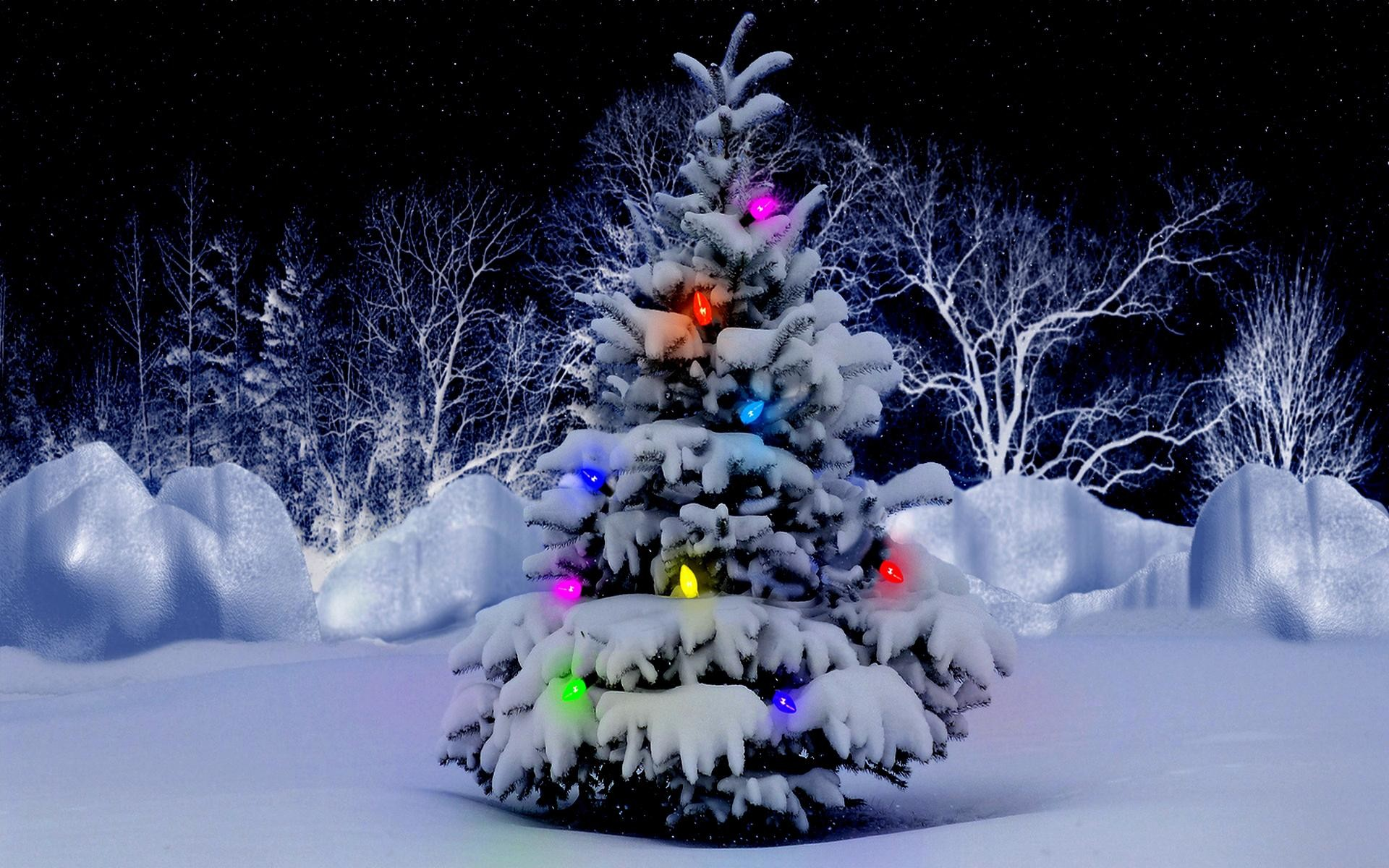 Beautiful Christmas Wallpapers (66+ background pictures)