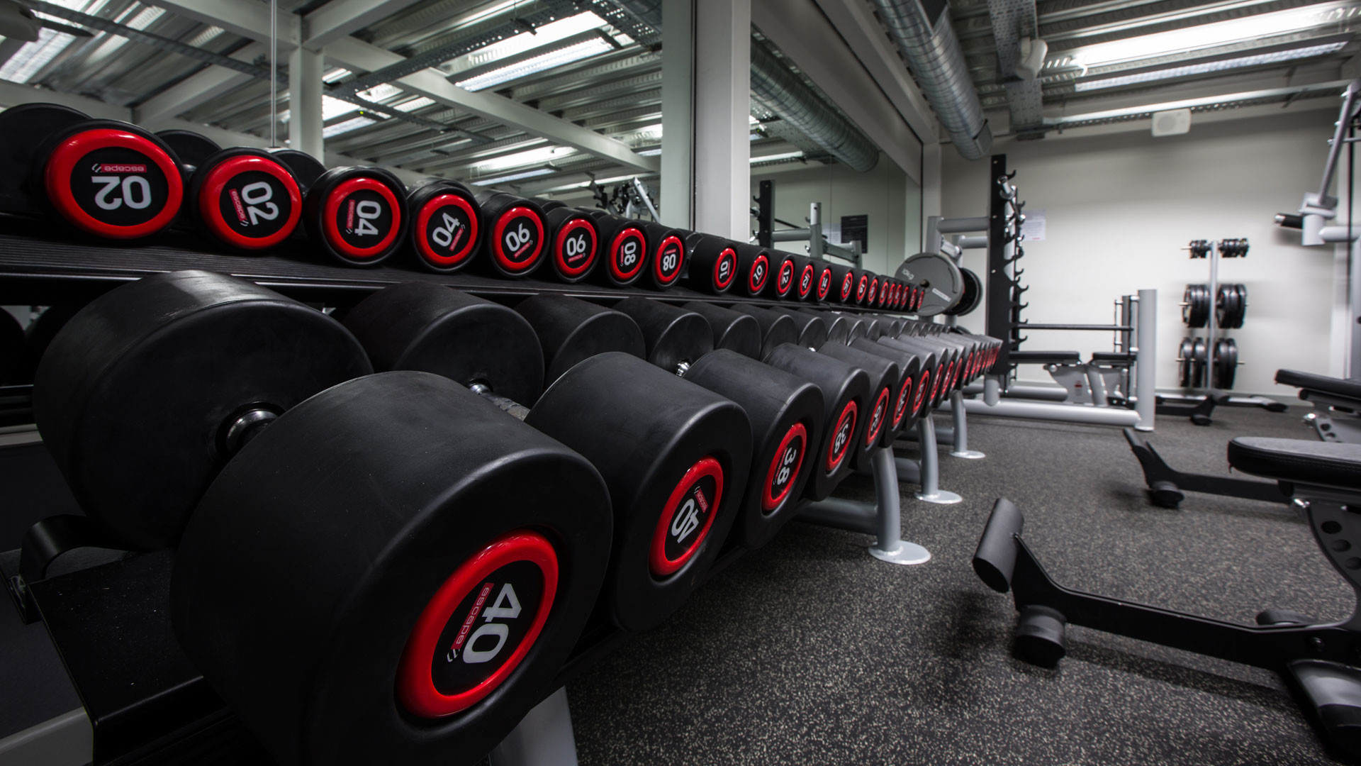 Gym Wallpapers 68 Background Pictures