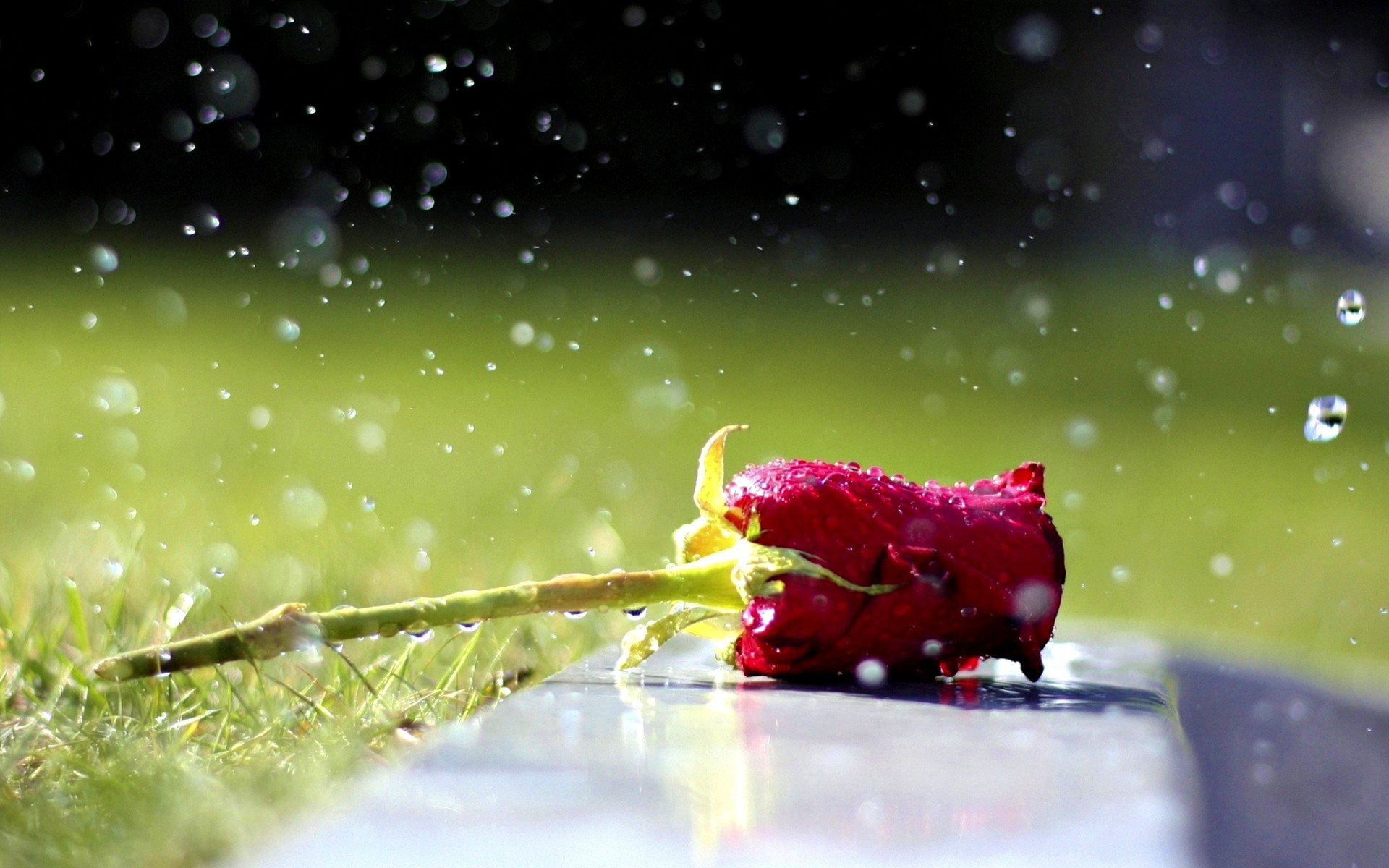 Wallpapers of raindrops 64 background pictures 1920x1200 raindrops wallpaper raindrops on roses hd wallpapers thecheapjerseys Images