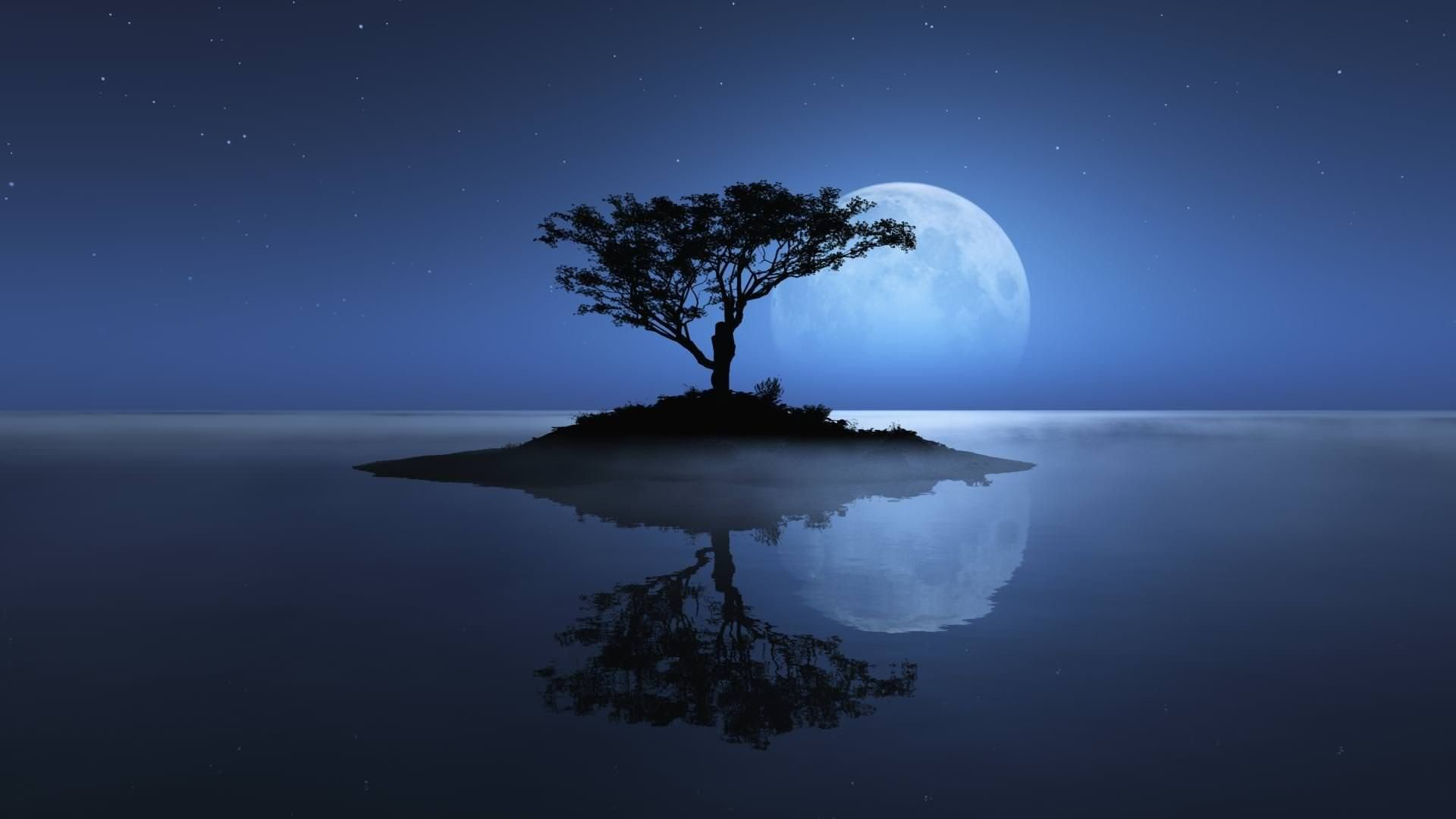 Blue Moon Wallpapers 78 Background Pictures