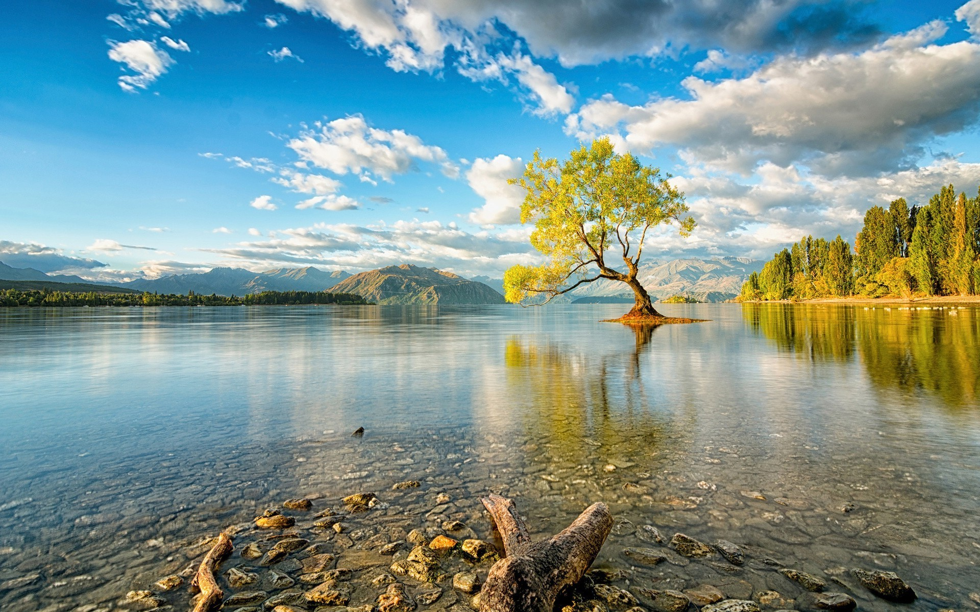 Colorful nature wallpapers 56 background pictures - Colorful nature pics ...