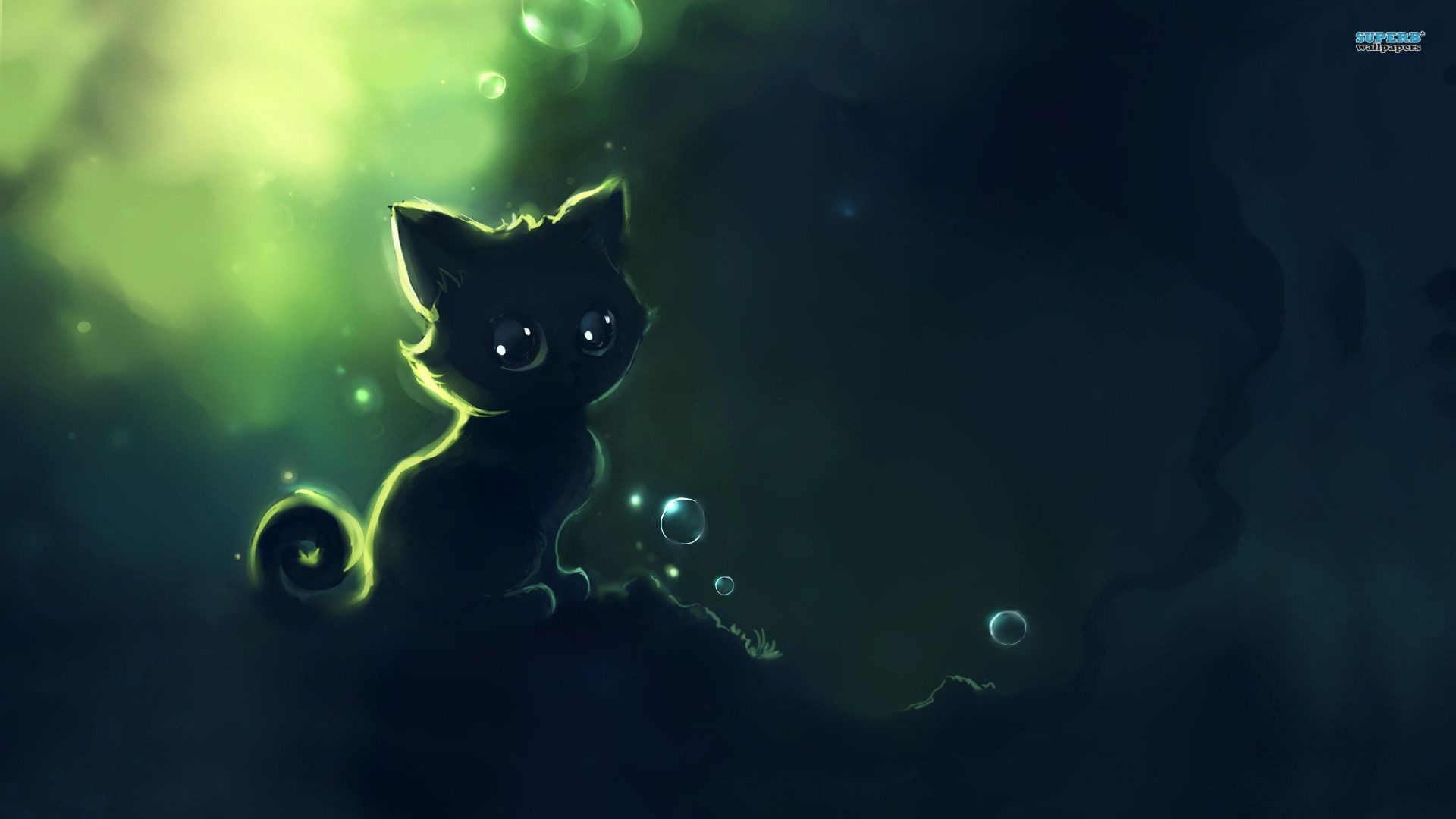 2048x1365 Space Cat Wallpapers High Quality For Desktop Wallpaper