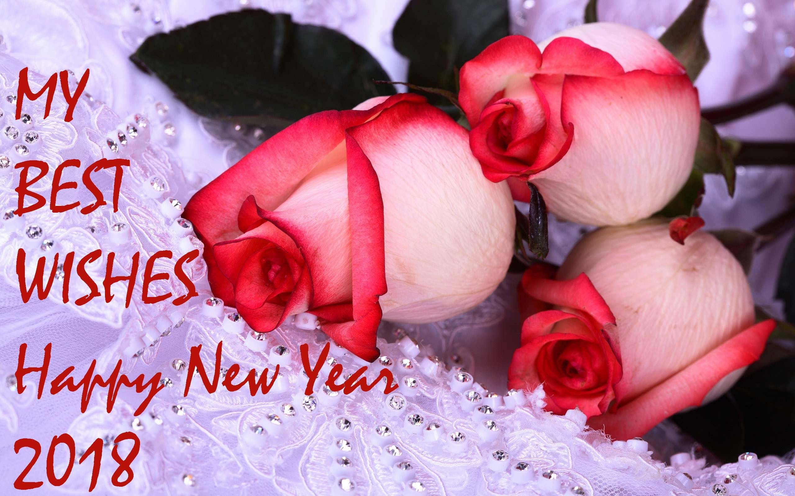 2560x1600 attractive wishes happy new year roses flower 2560x1600 happy new year love wallpapers 2018 69 background pictures