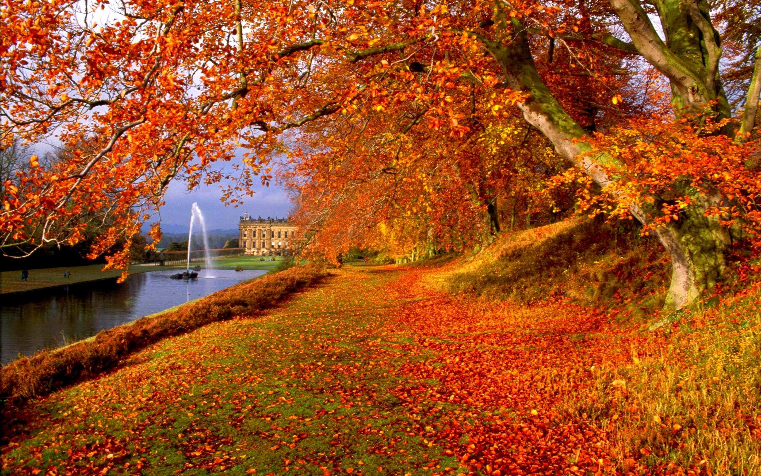 Fall Pictures For Wallpapers 70 Background Pictures
