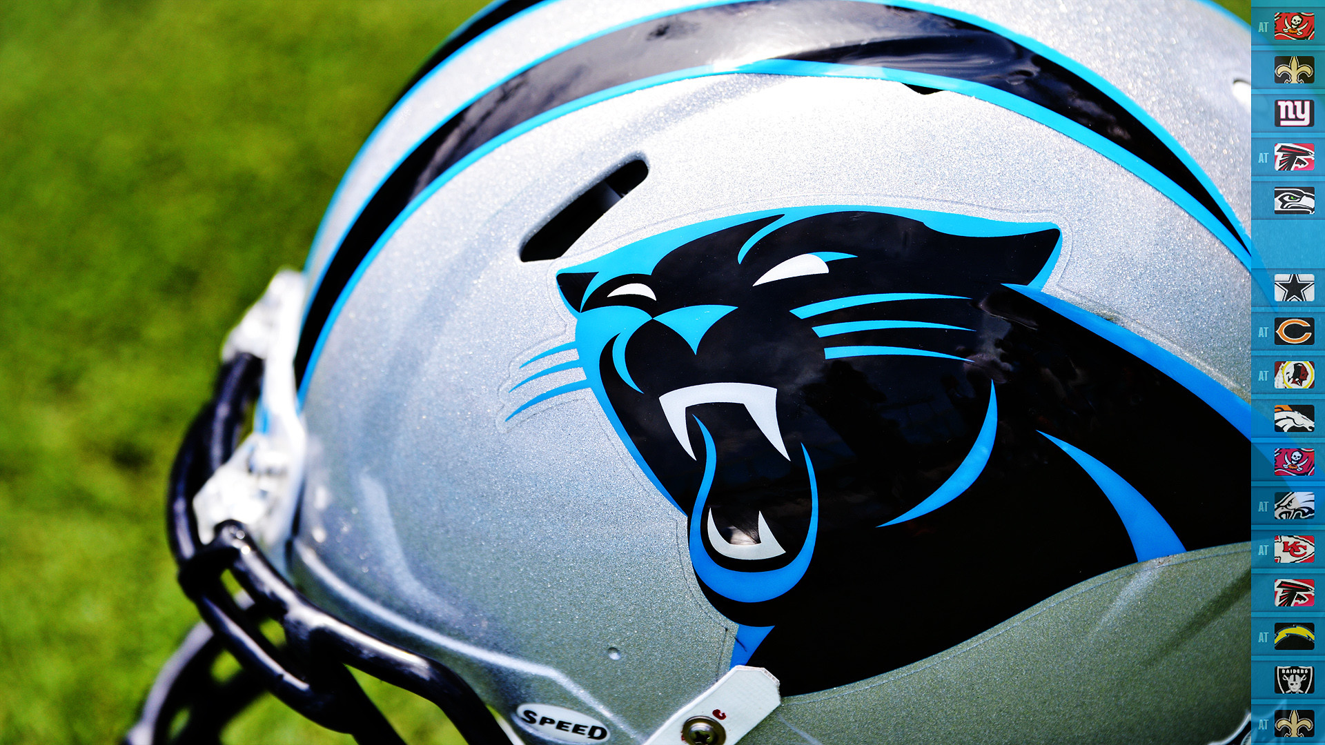 Carolina Panthers Wallpapers 85 Background Pictures