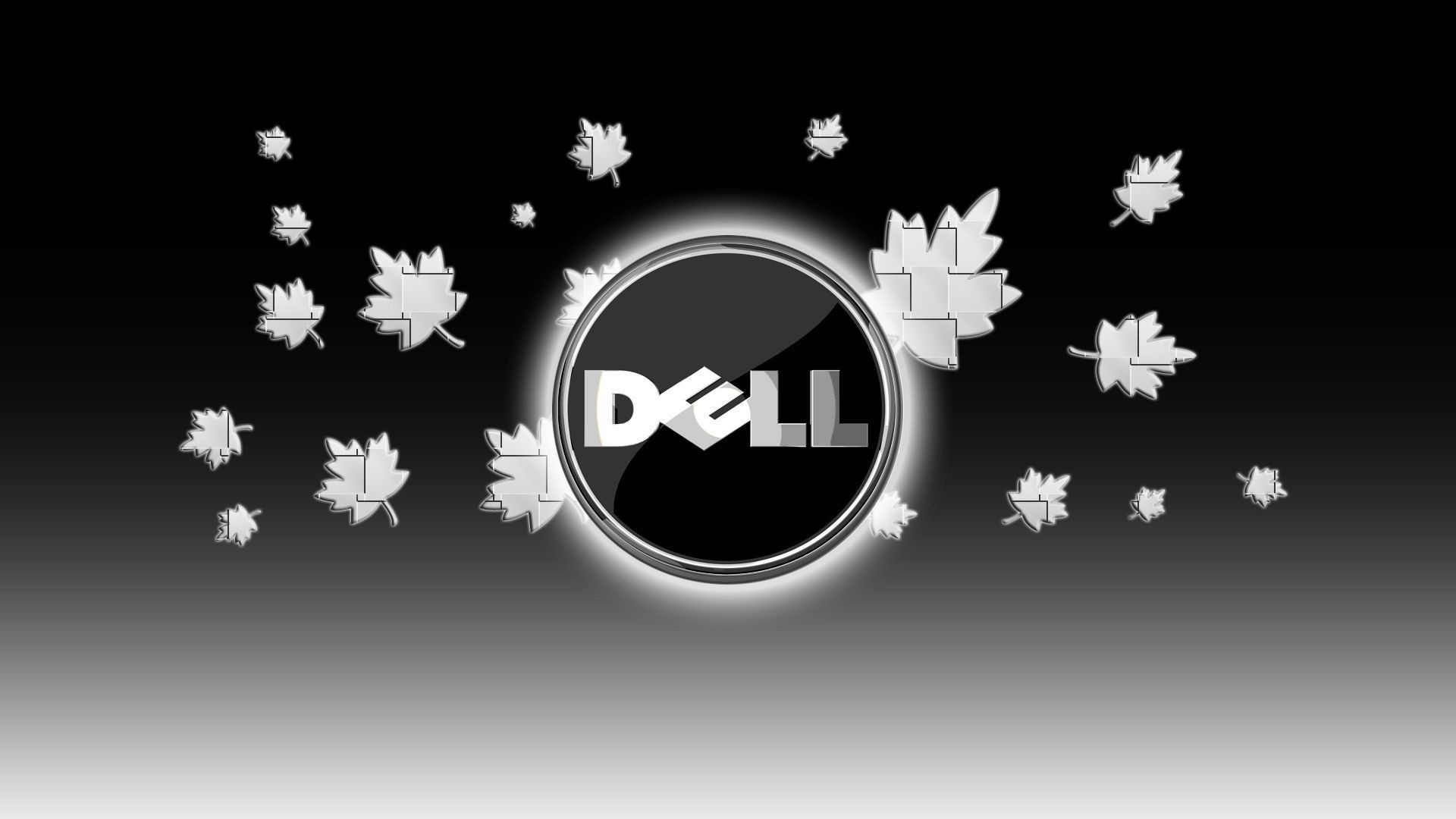 1920x1200 HD Dell Backgrounds Wallpaper Images For Windows 850A 600 Wallpapers 54