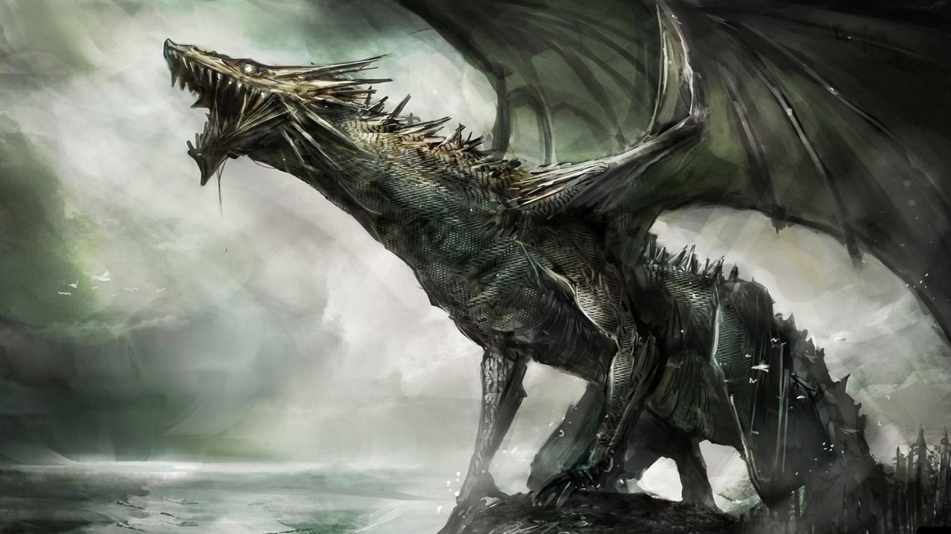 Water Dragon Wallpapers 80 Background Pictures