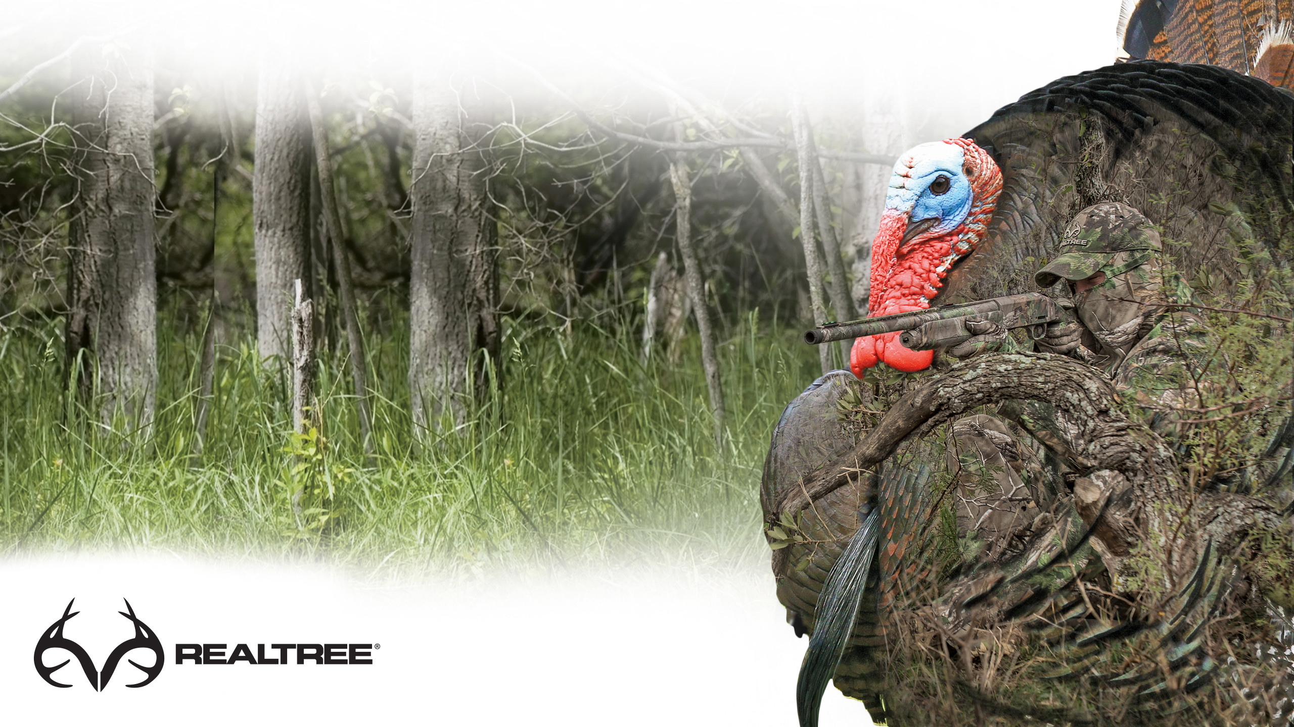 Realtree Wallpaper For Computer: Realtree Wallpapers (74+ Background Pictures
