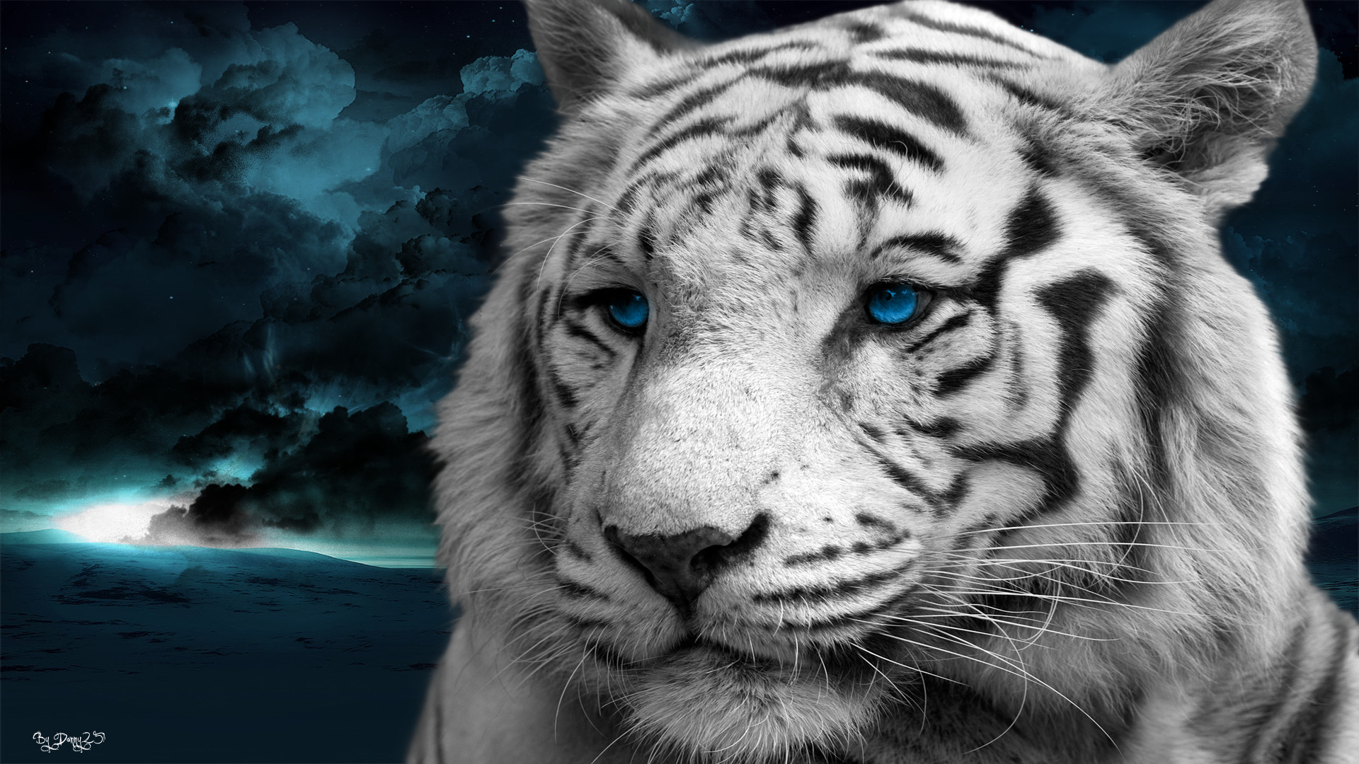 wallpapers animals 71 background pictures