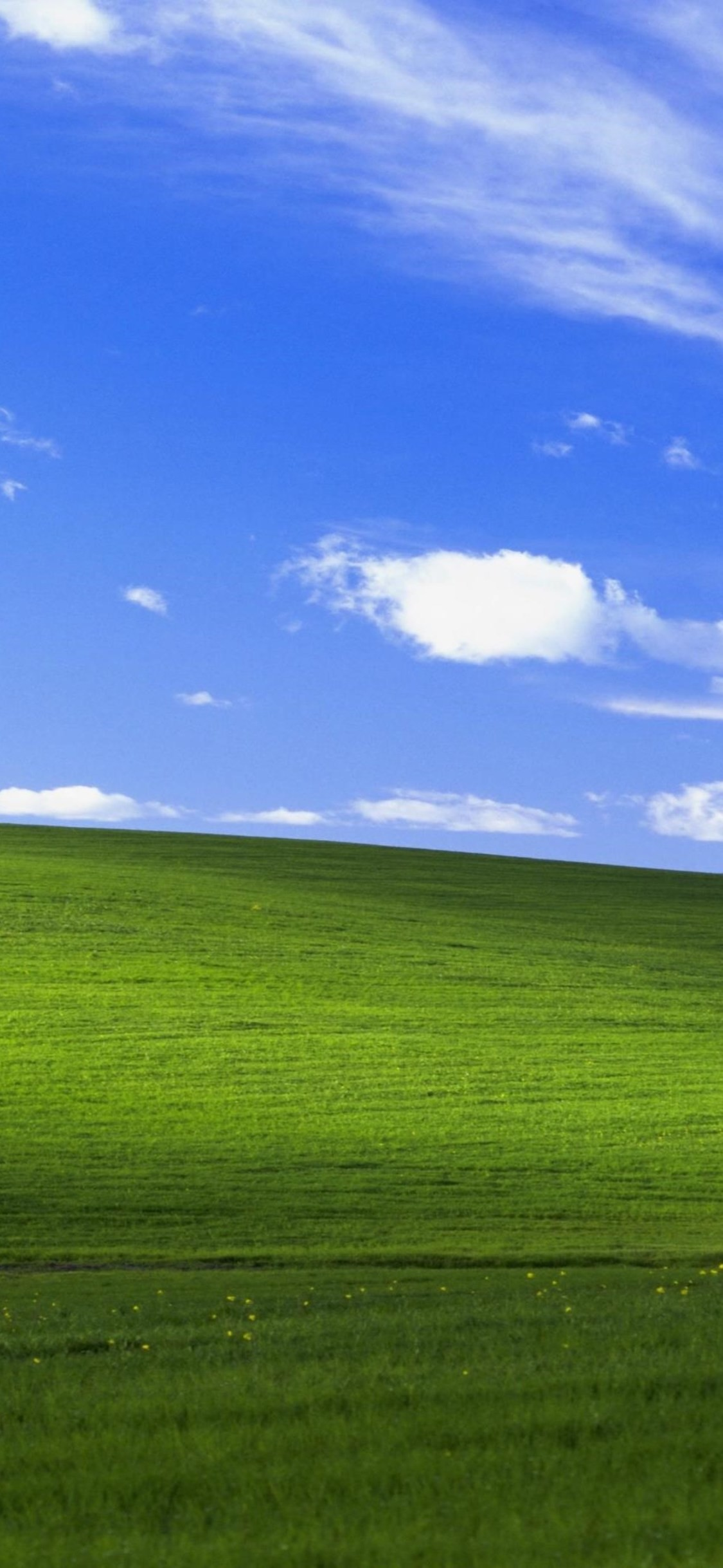 Windows Xp Wallpapers Bliss 50 Background Pictures