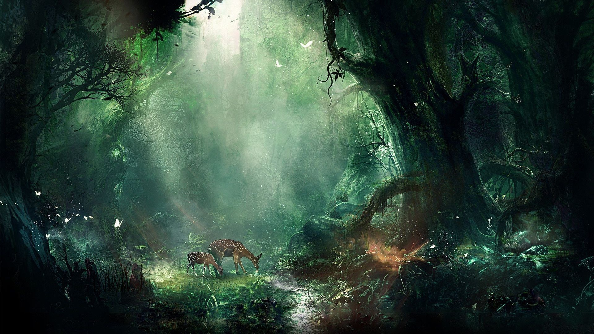 Fantasy Hd Wallpapers 1920x1080 83 Background Pictures