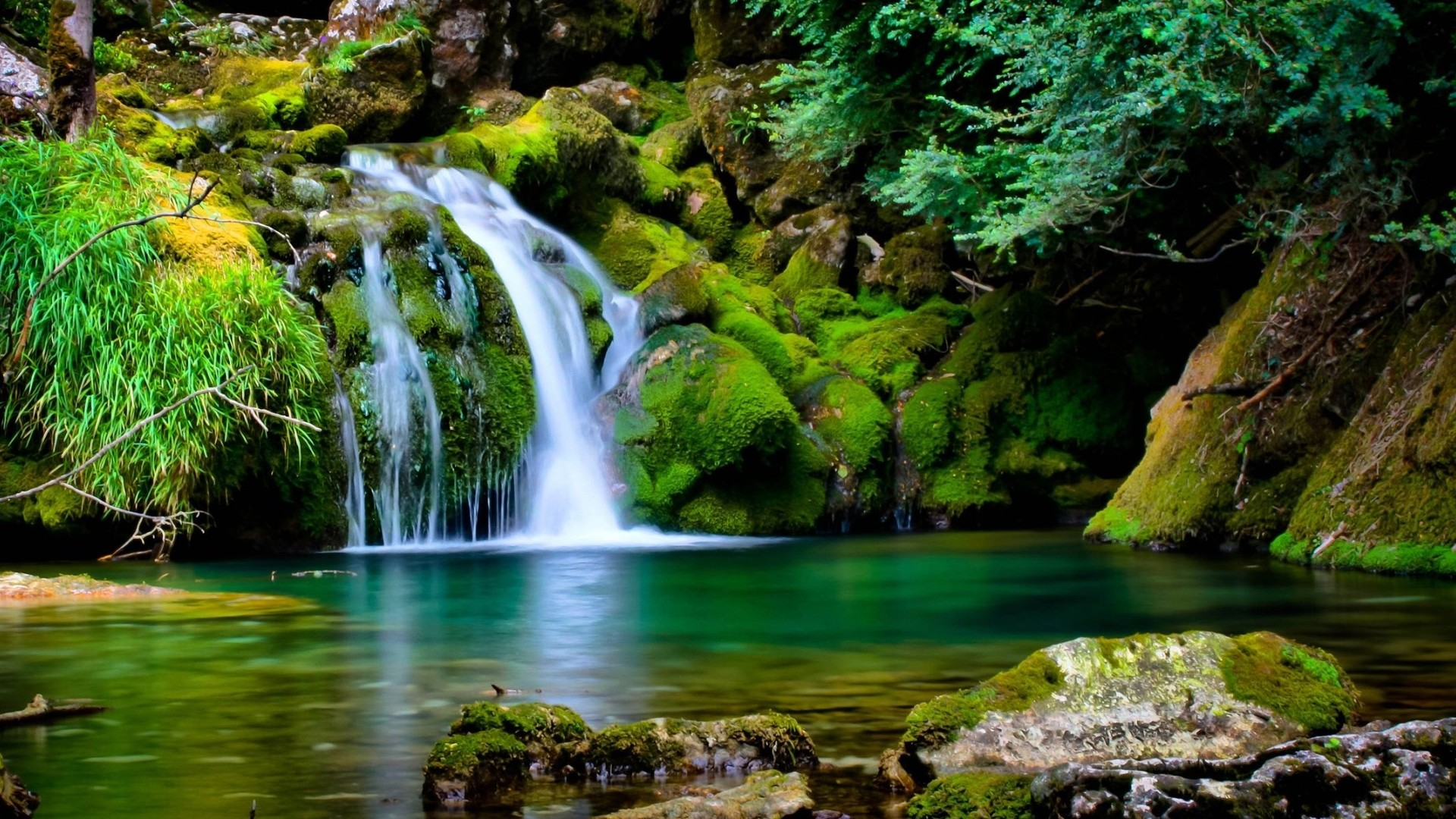 Cool Nature Pc Backgrounds