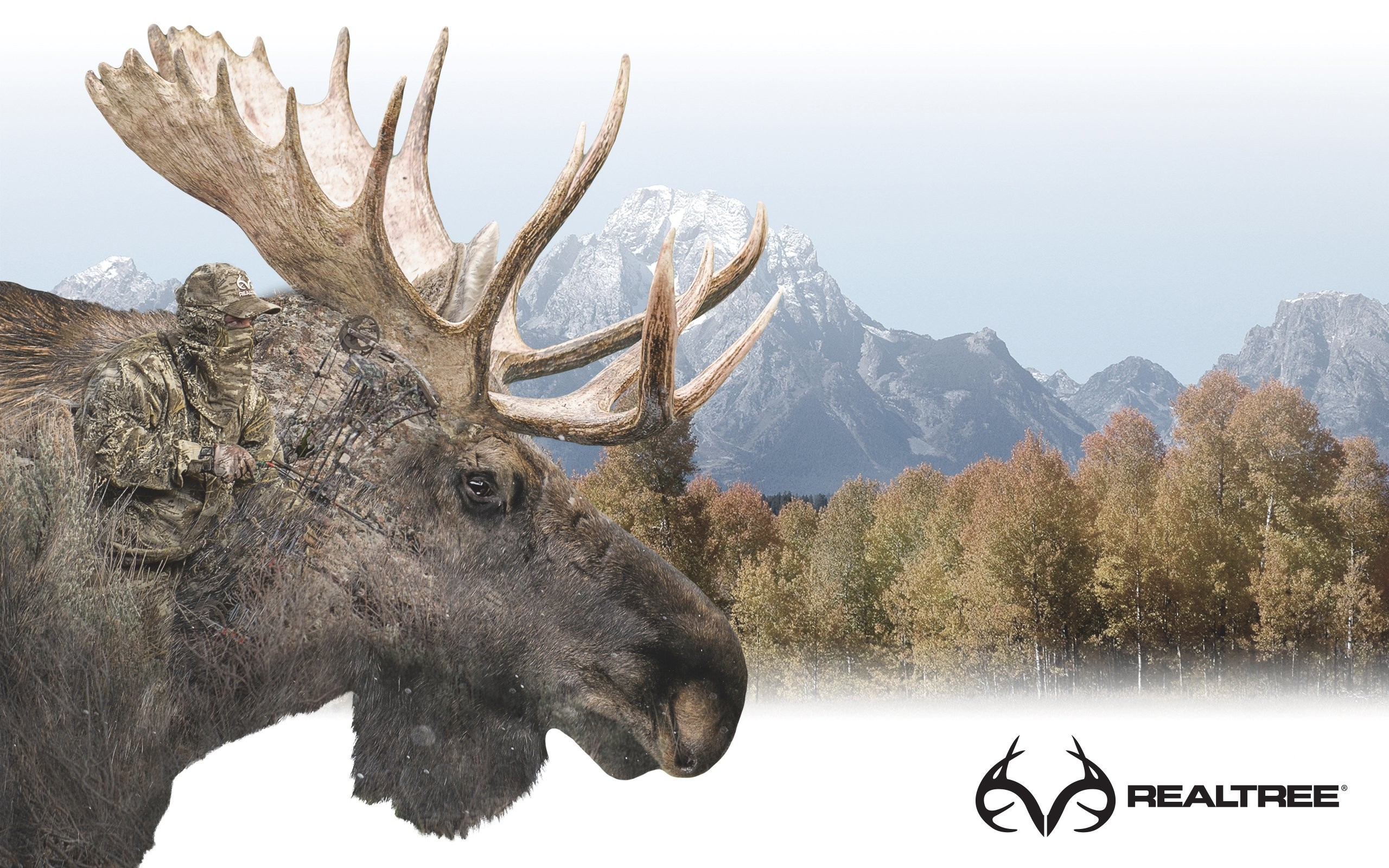 Realtree wallpapers 74 background pictures - Realtree wallpaper ...