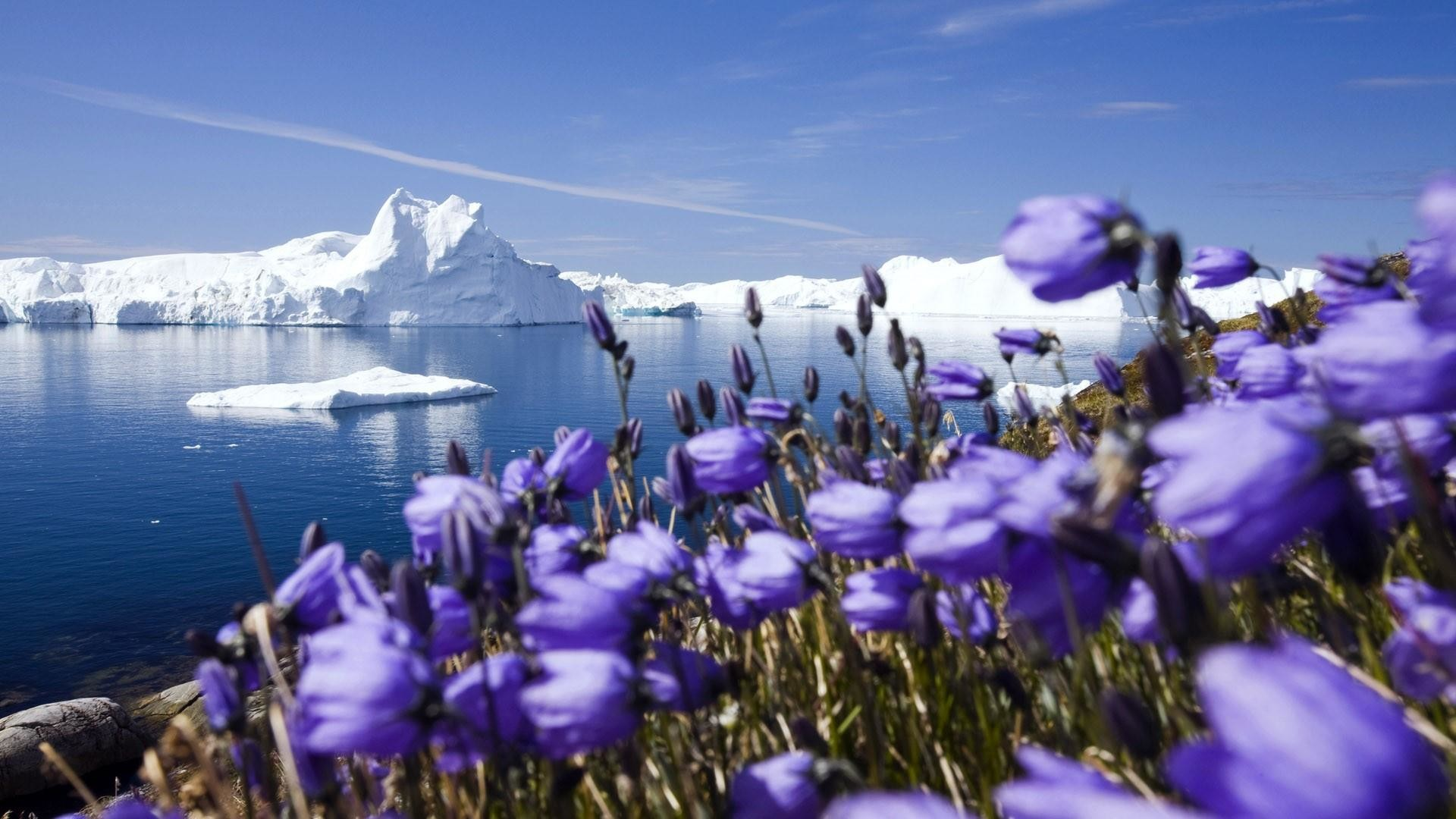 Greenland Wallpapers 64 Background Pictures