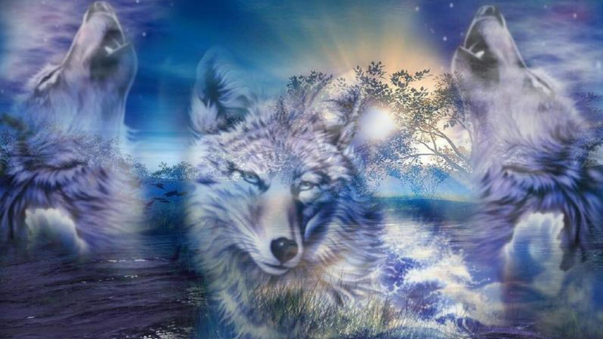 Wolf Howling At The Moon Wallpapers 74 Background Pictures