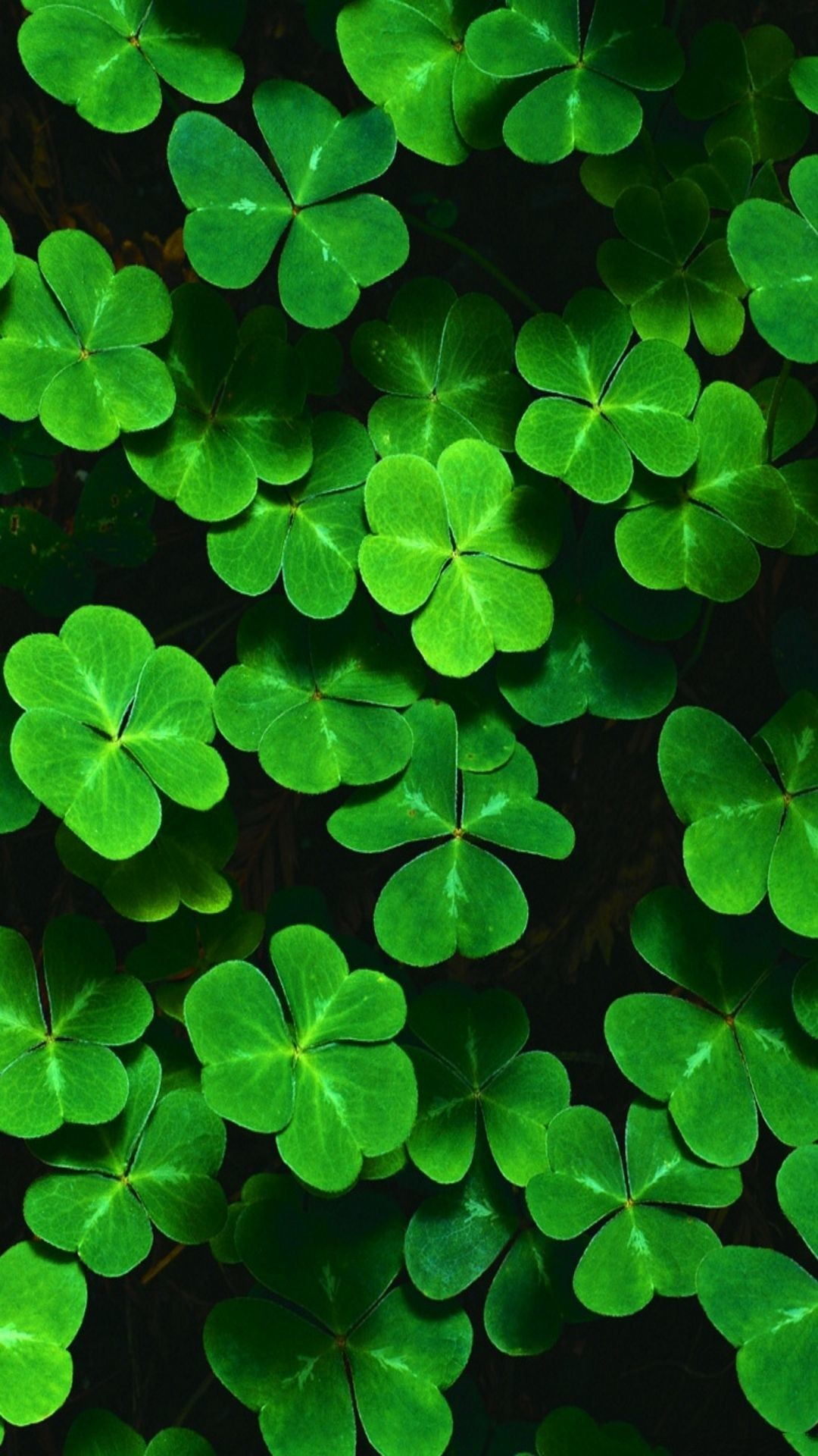 Irish Wallpapers Backgrounds 69 Background Pictures