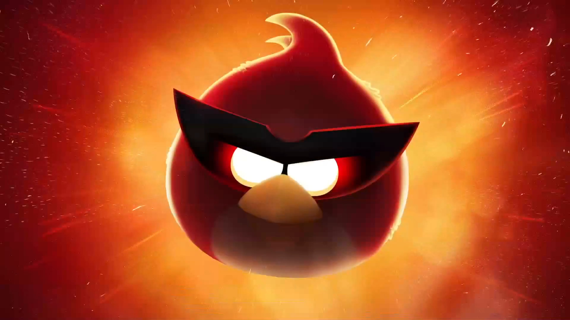 Angry Bird Wallpapers 78 Background Pictures