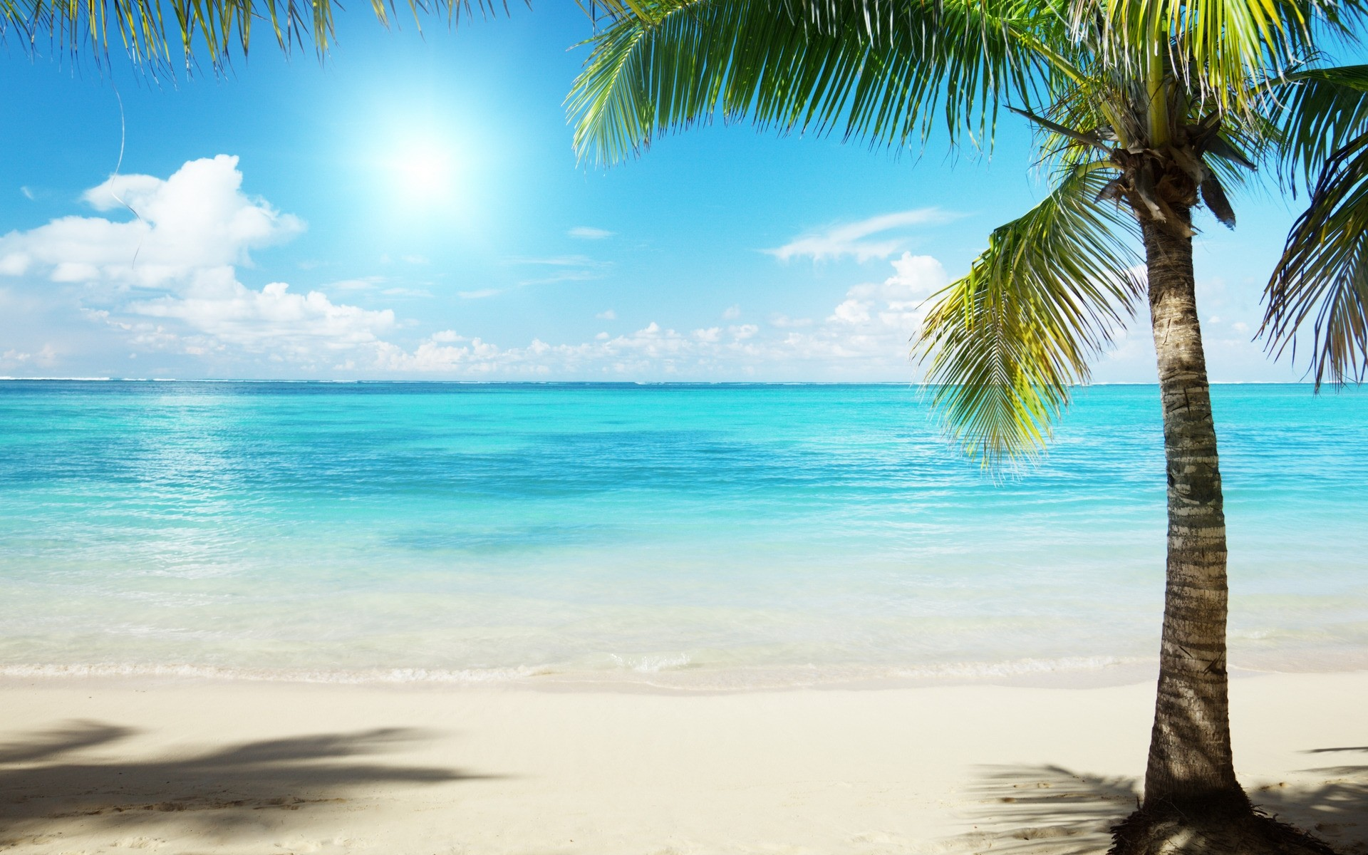 Summer Scenes Wallpapers 67 Background Pictures