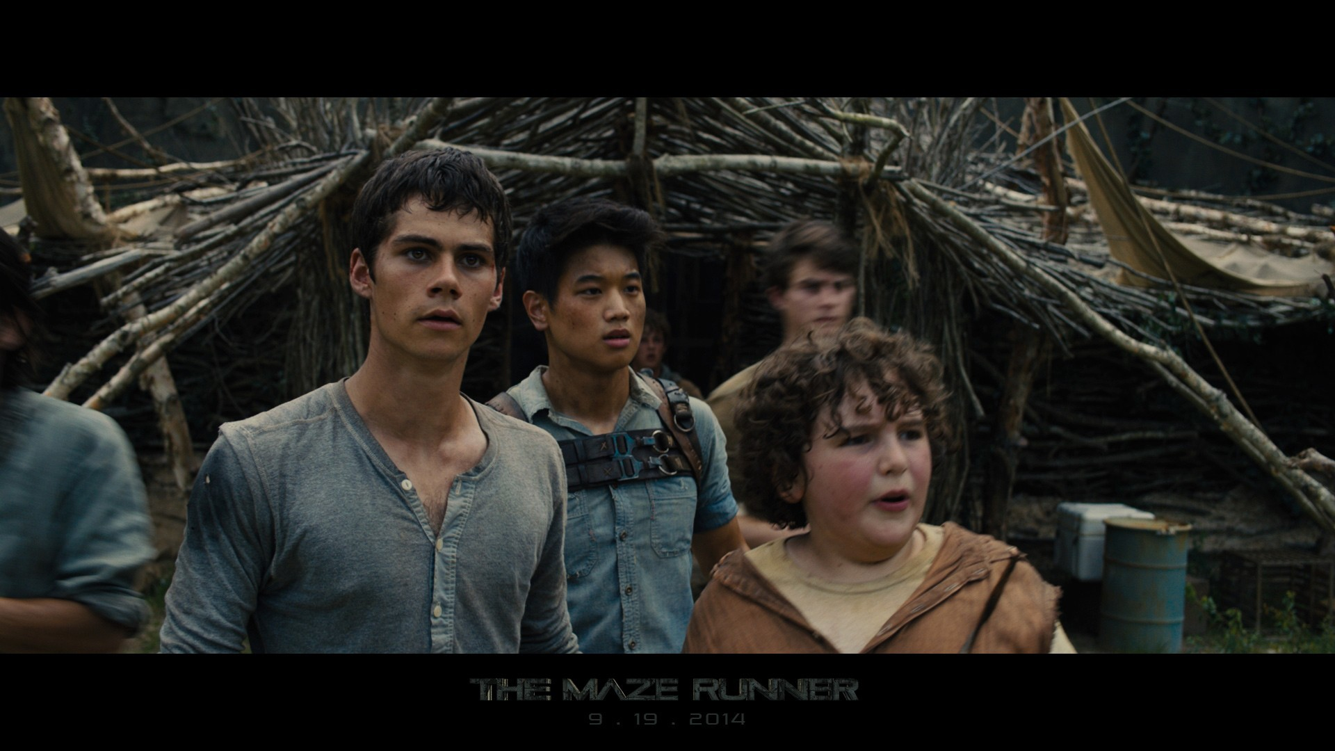 The Maze Runner Wallpapers 73 Background Pictures