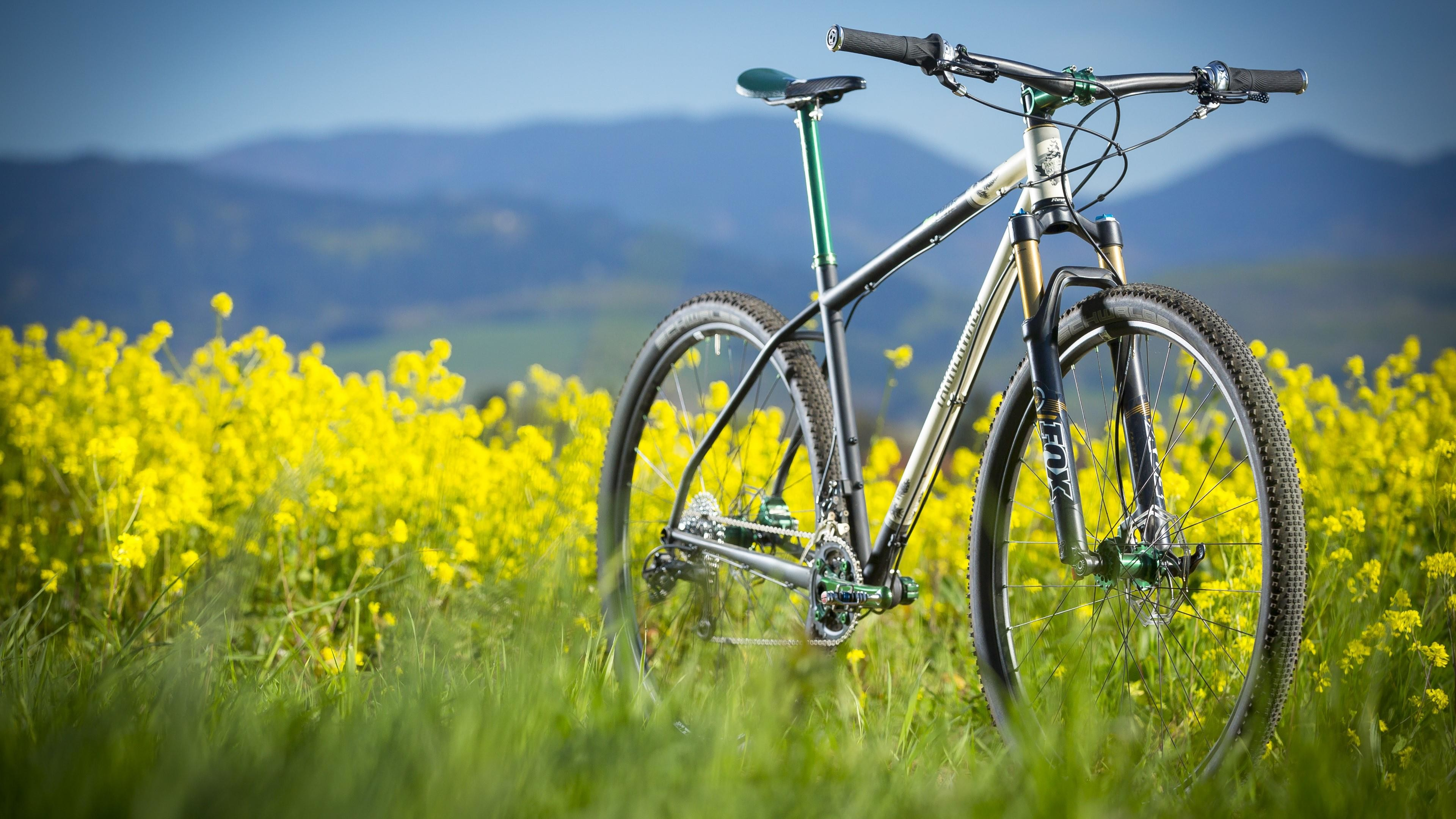 Mtb Wallpapers 68 Background Pictures