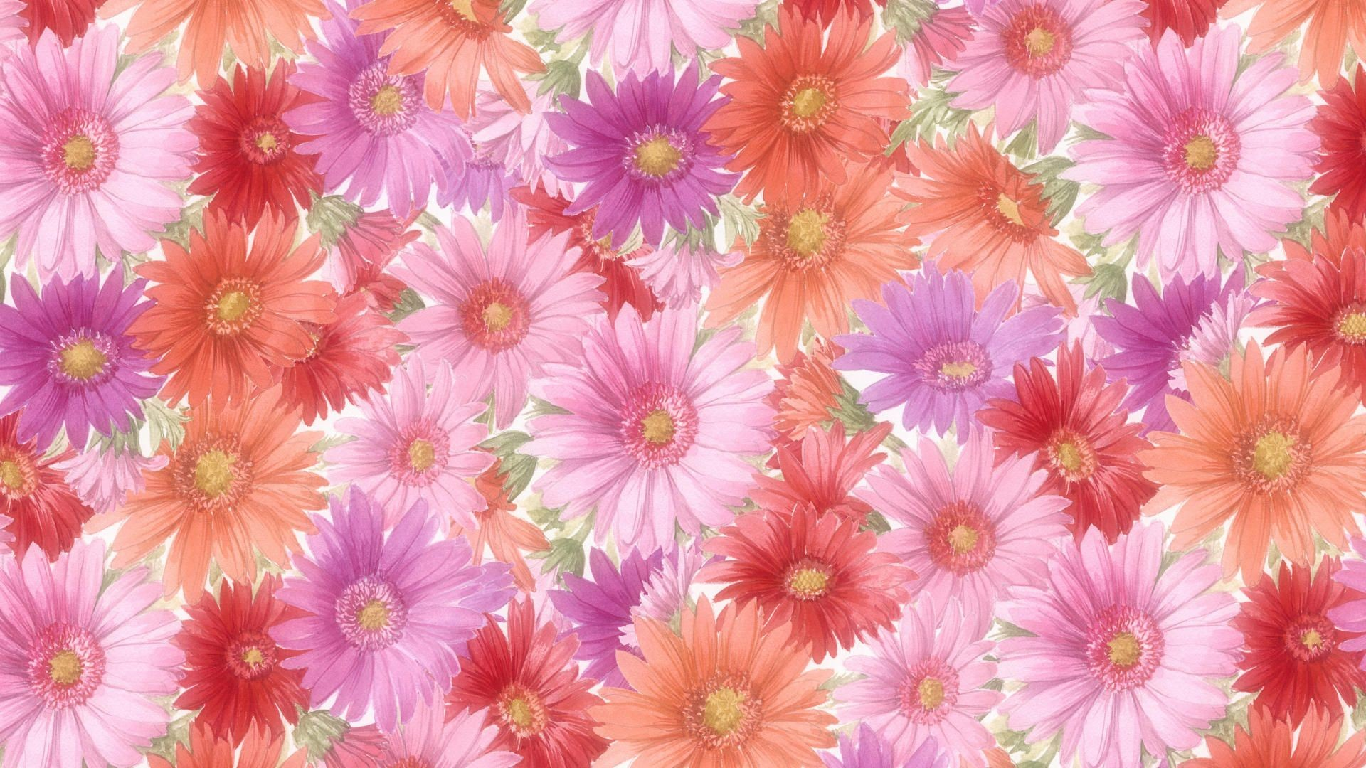 Hd Spring Flower Backgrounds Flowers Healthy