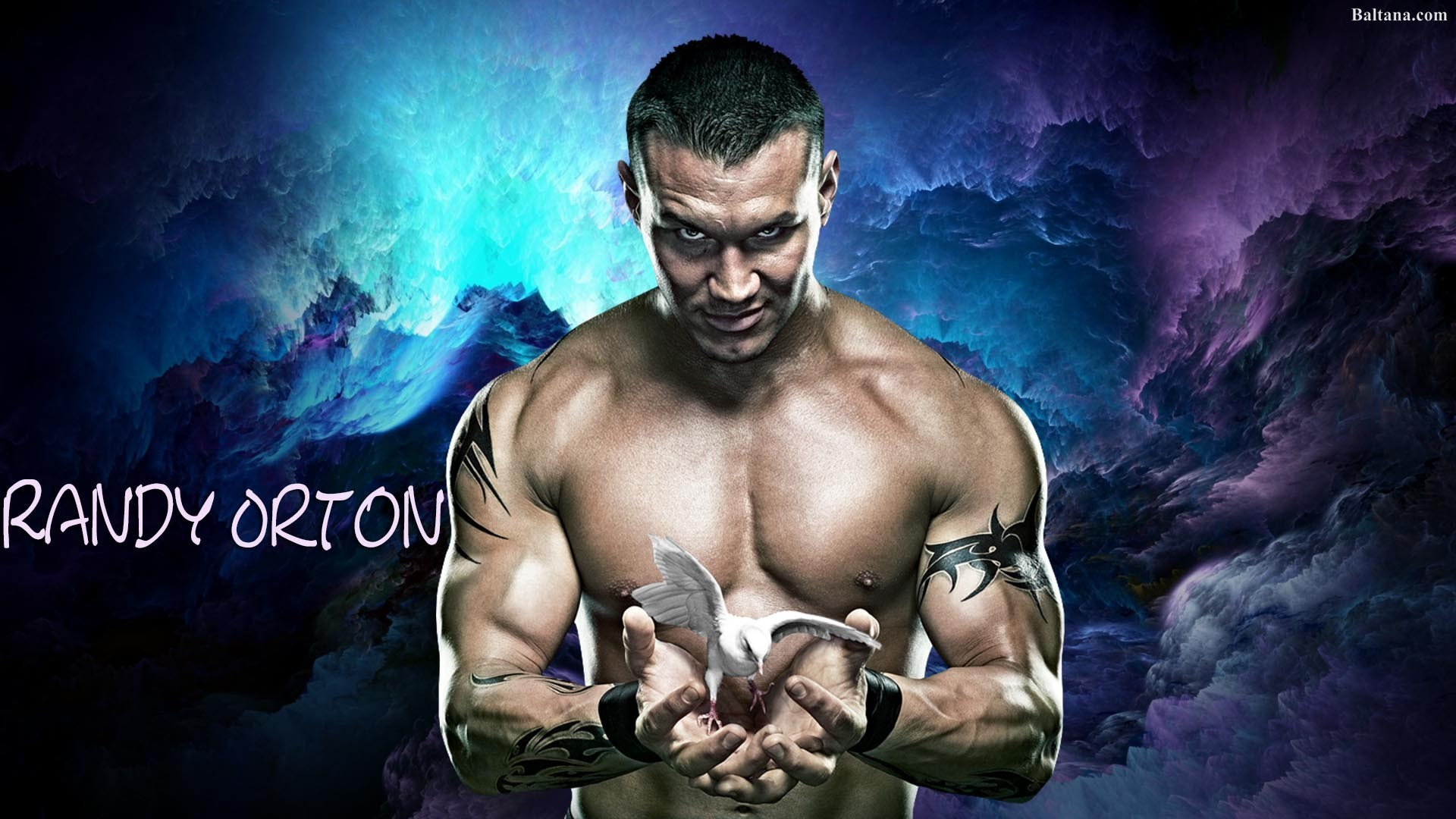 Randy Orton Wallpapers 55 Background Pictures