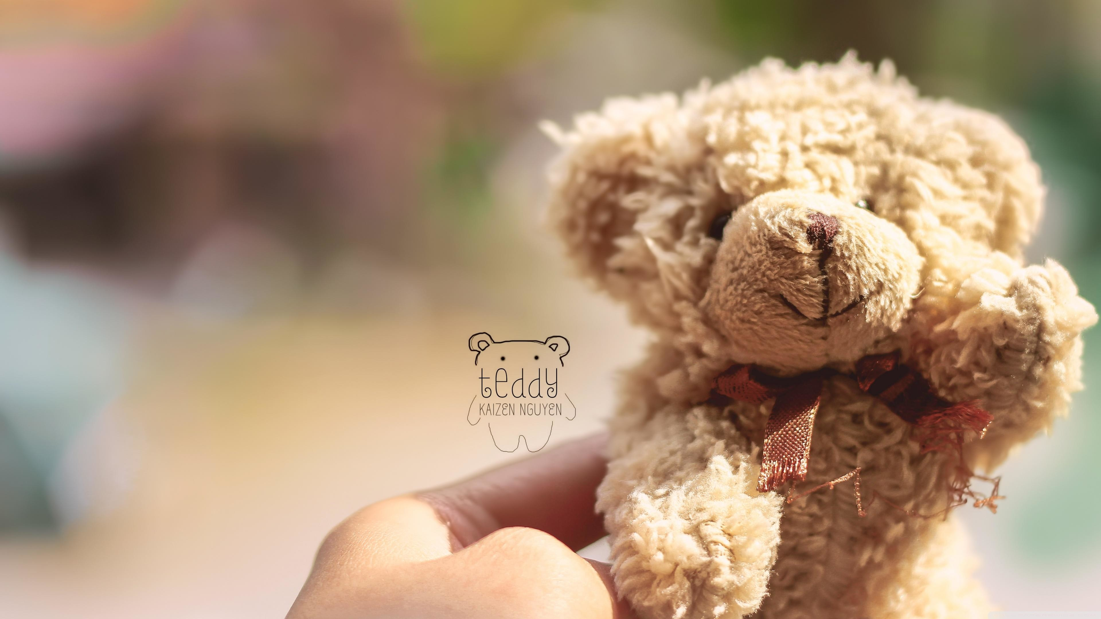 Cute Teddy Bear Wallpapers 59 Background Pictures