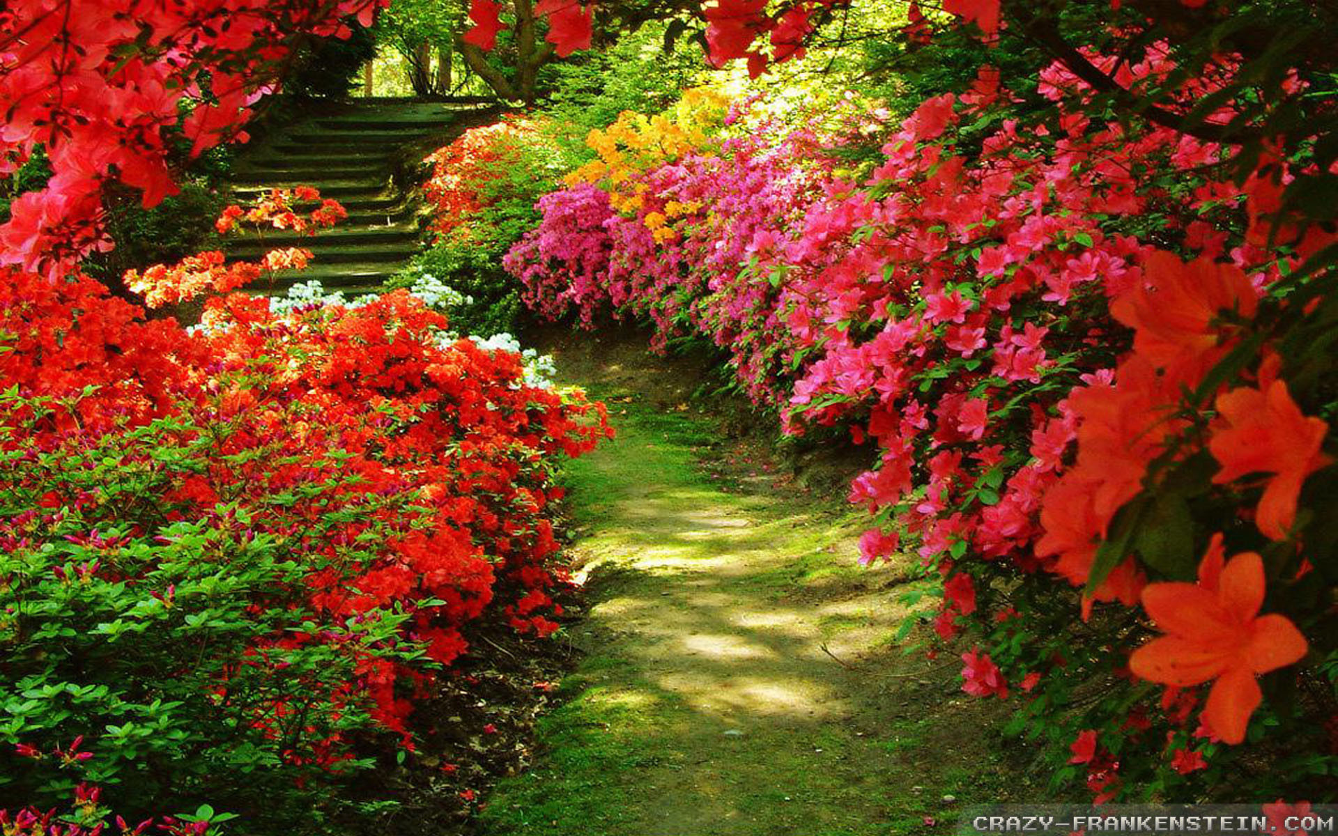 2880x1800 Full Size Of Garden Ideascolorful Flowers Color New Flower Garden Wallpapers Free Download Related