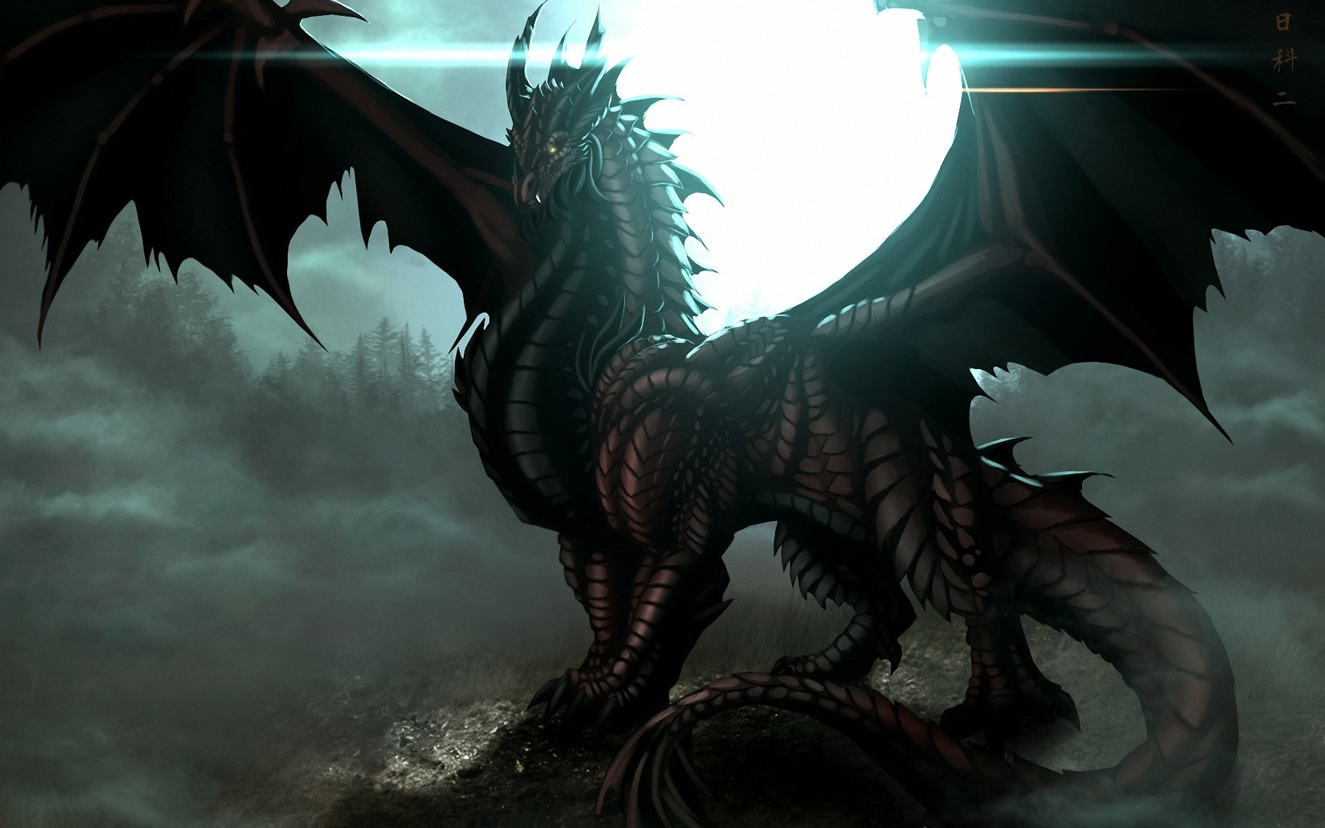Dark Dragon Wallpapers 61 Background Pictures