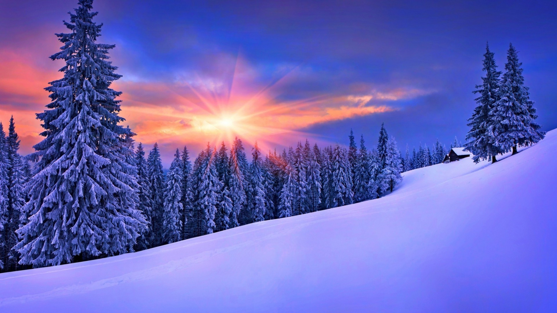 Snow Wallpapers 62 Background Pictures