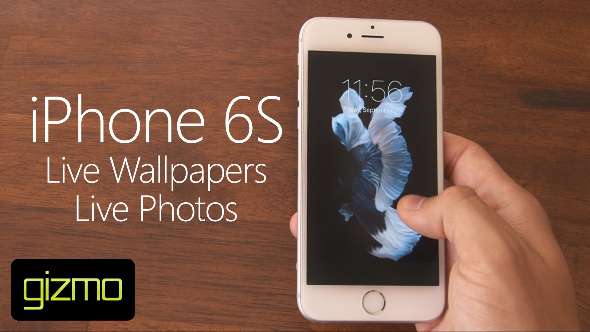 Iphone 6s plus wallpaper live download