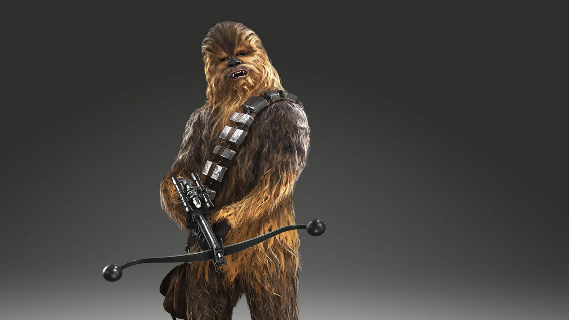 Chewbacca Wallpapers 67 Background Pictures