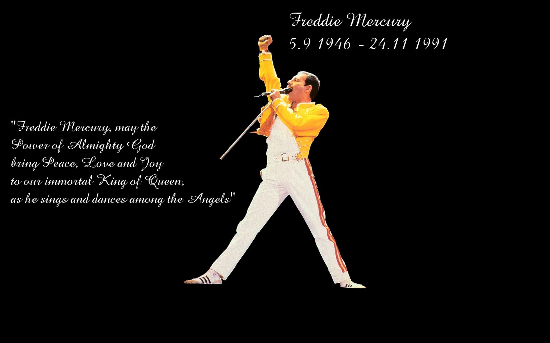 Freddie Mercury Wallpapers 68 Background Pictures