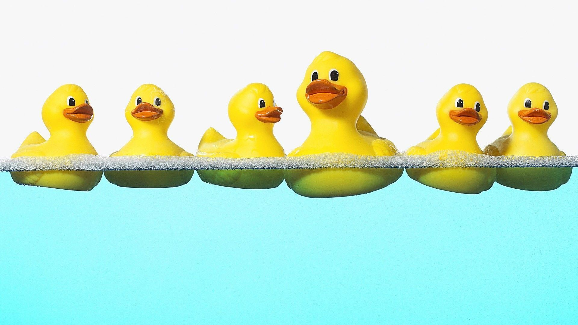 Rubber Ducky Wallpapers (48+ background pictures)