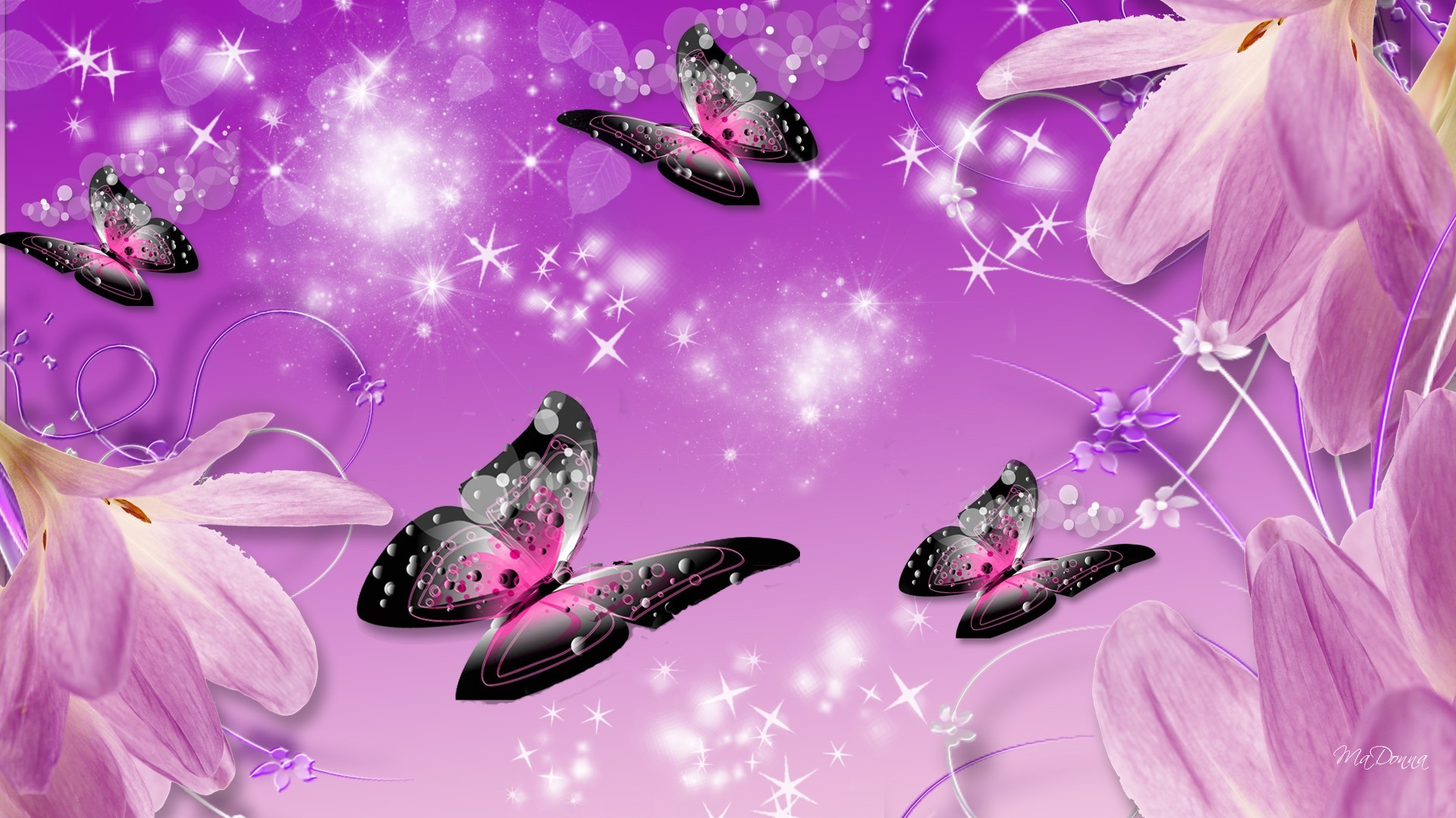 Purple Butterfly Wallpapers 75 Background Pictures