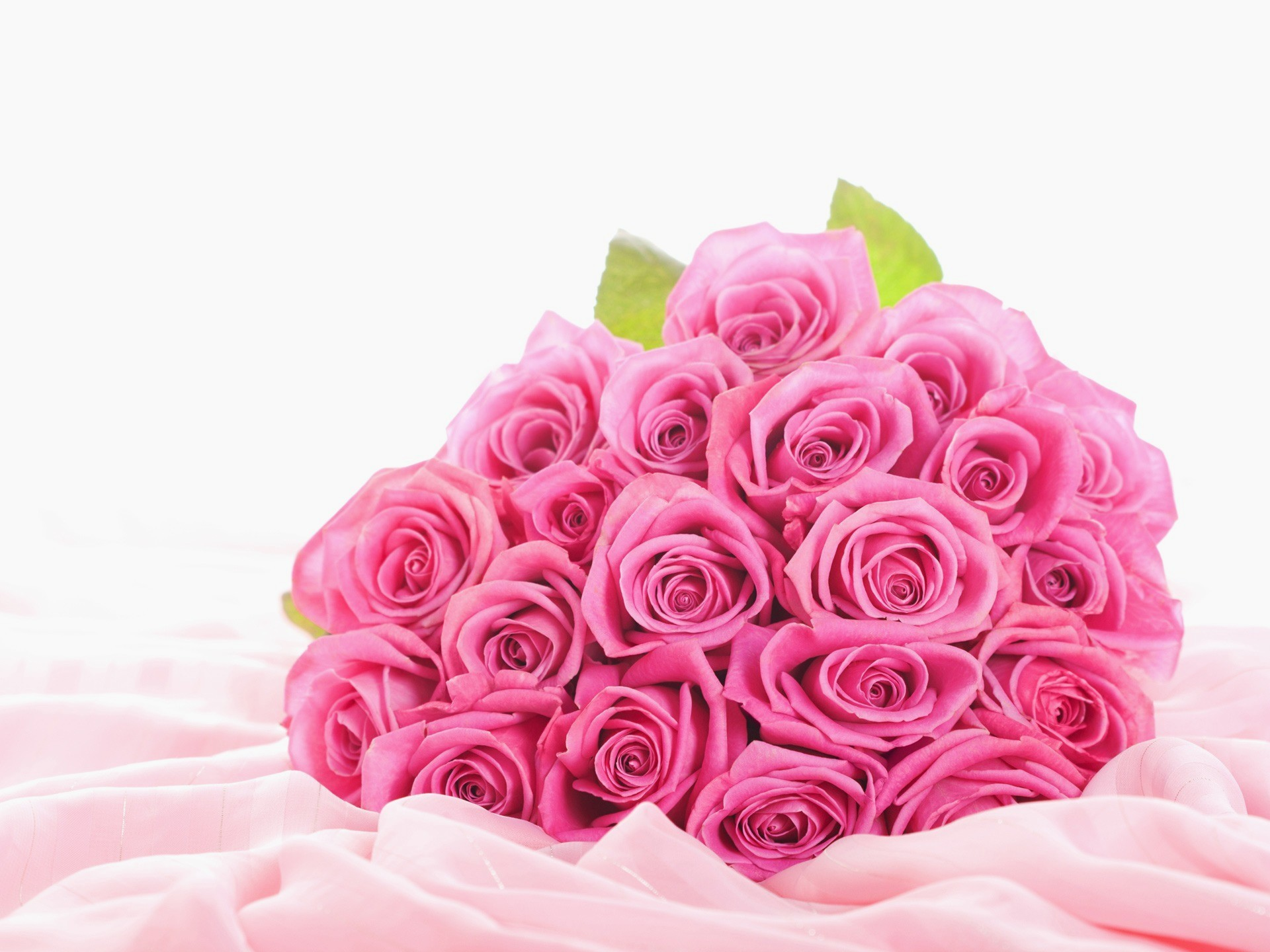 Pink Flowers Wallpapers 78 Background Pictures