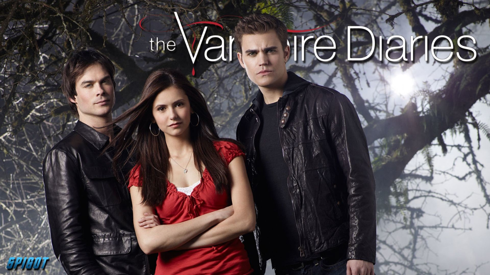 Vampire Diaries Wallpapers 84 Background Pictures