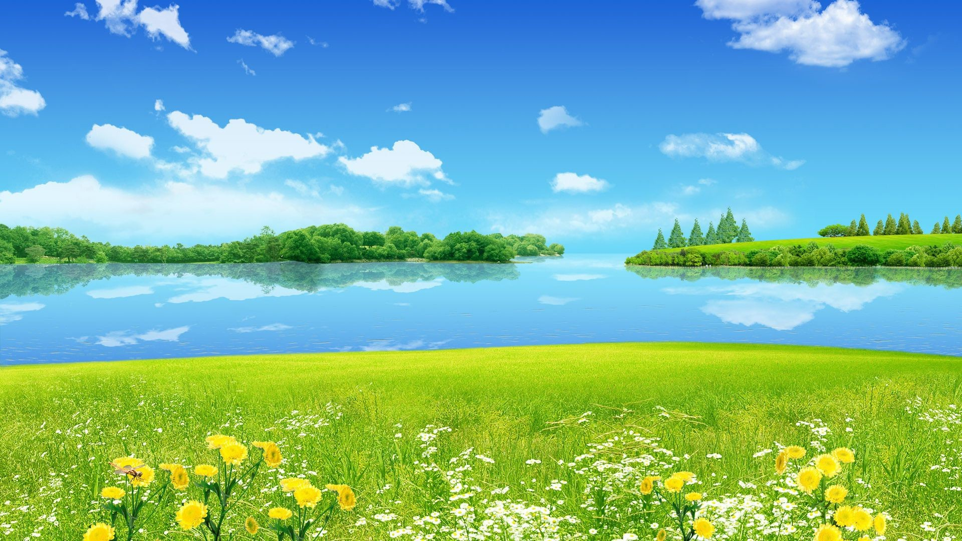 Sunny wallpapers 62 background pictures - Sunny name wallpaper ...